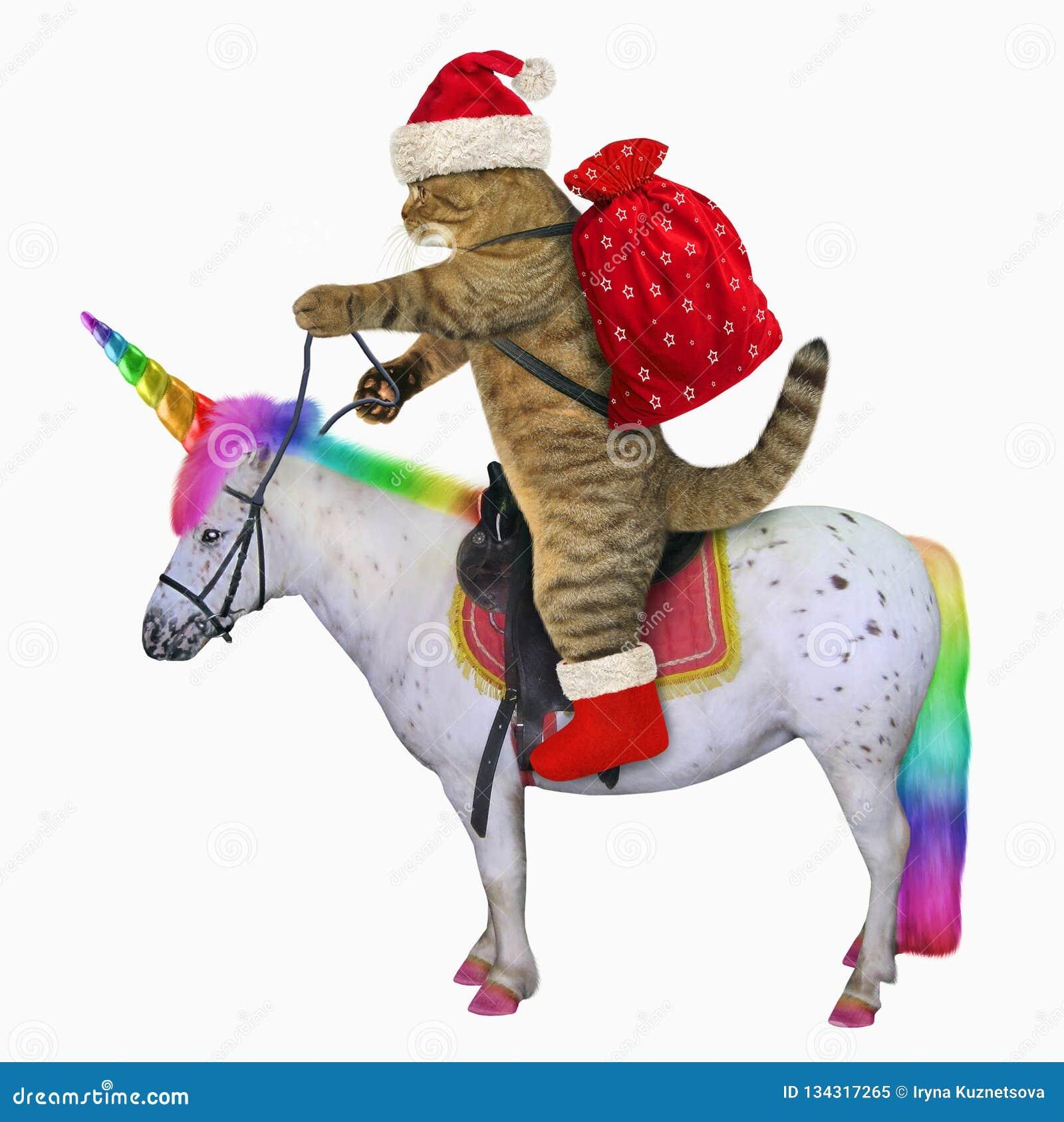Kot Santa jedzie jednorożec 2