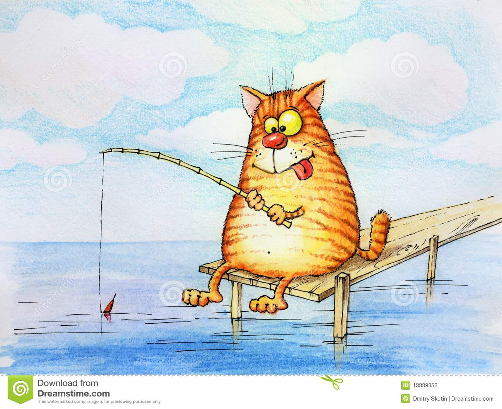 Kota fisher