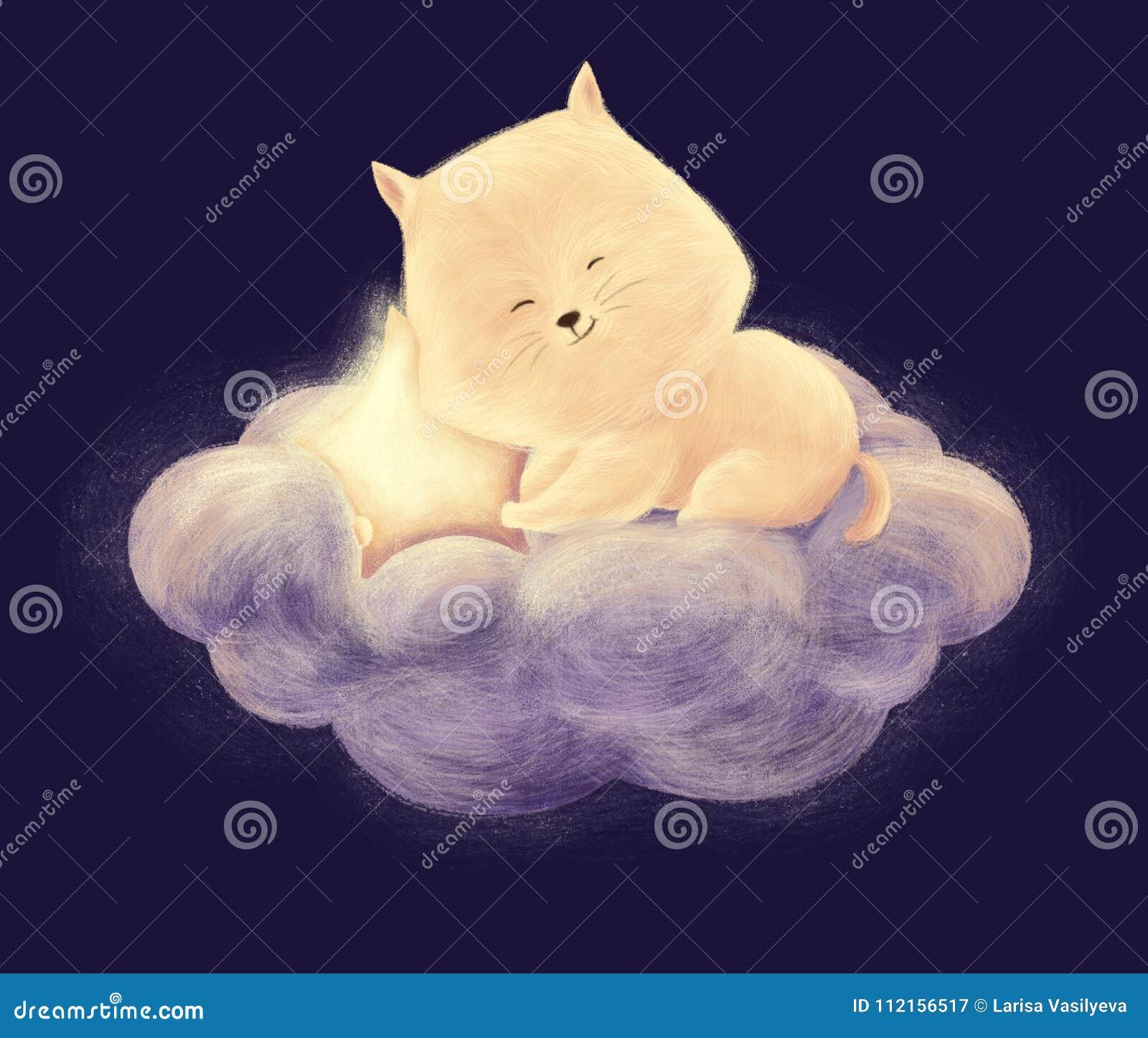 Kota sen na chmurze