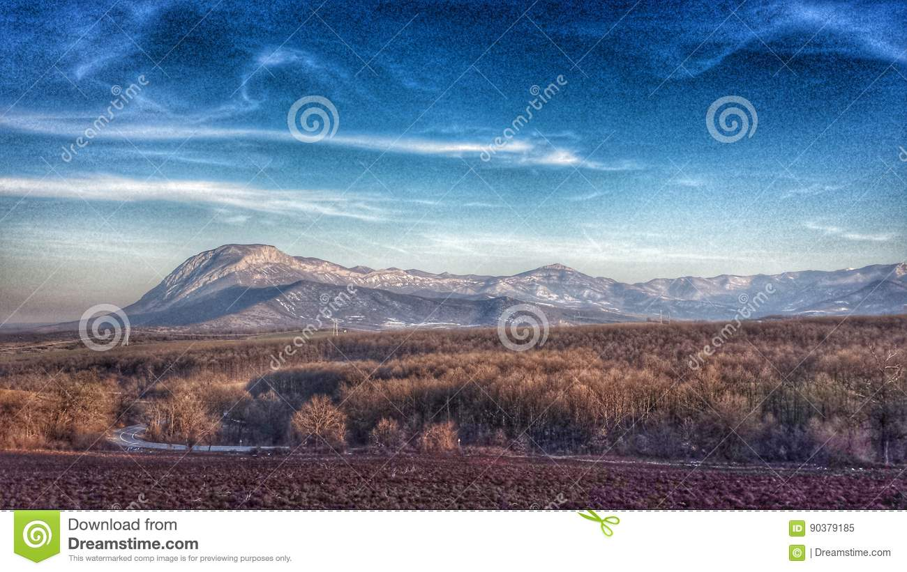 Rocky mountain range with forest and field in front