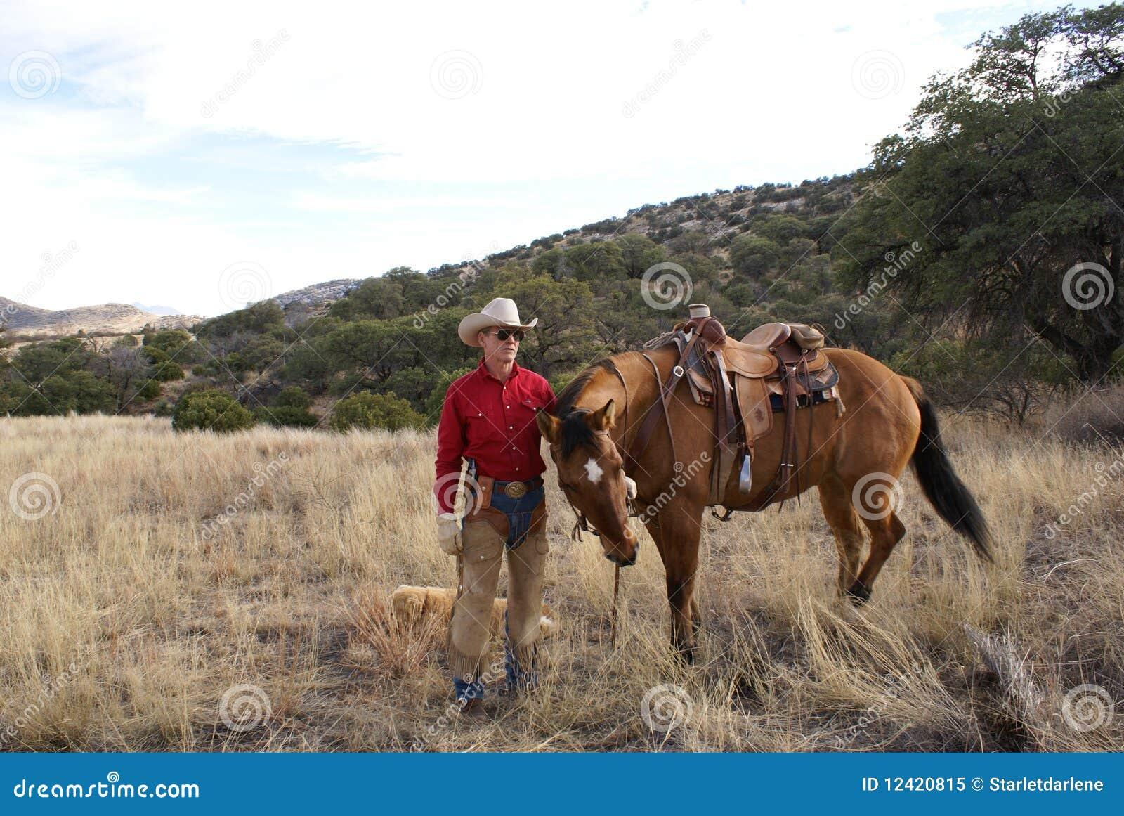 Kowbojski koń