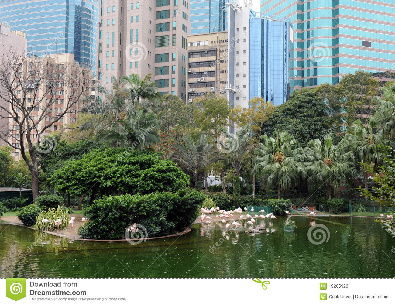... Park And Hong Kong Skyline Royalty Free Stock Image - Image: 19265926