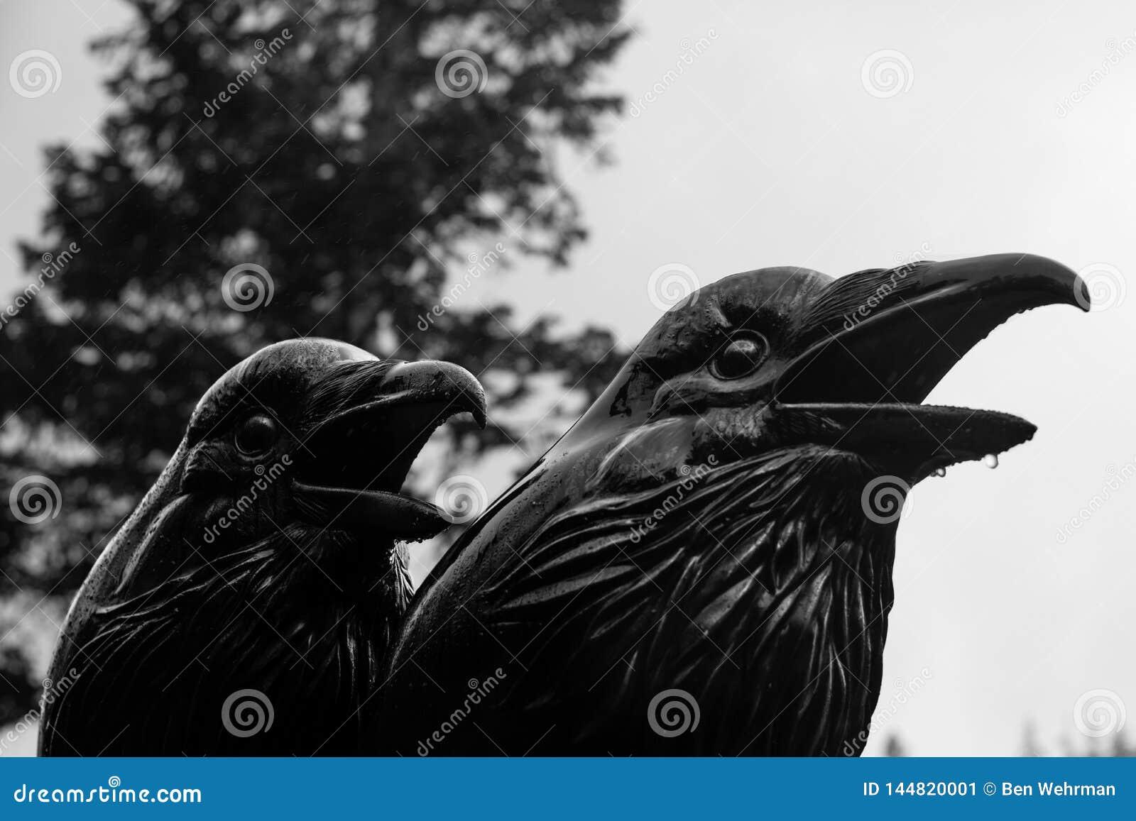 Krähe und Raven Statue
