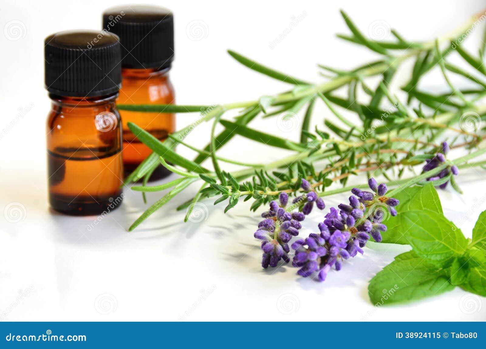 Different herbs royalty free stock image image 16265346 - Kr Uter Und Therische Le Lizenzfreies Stockfoto