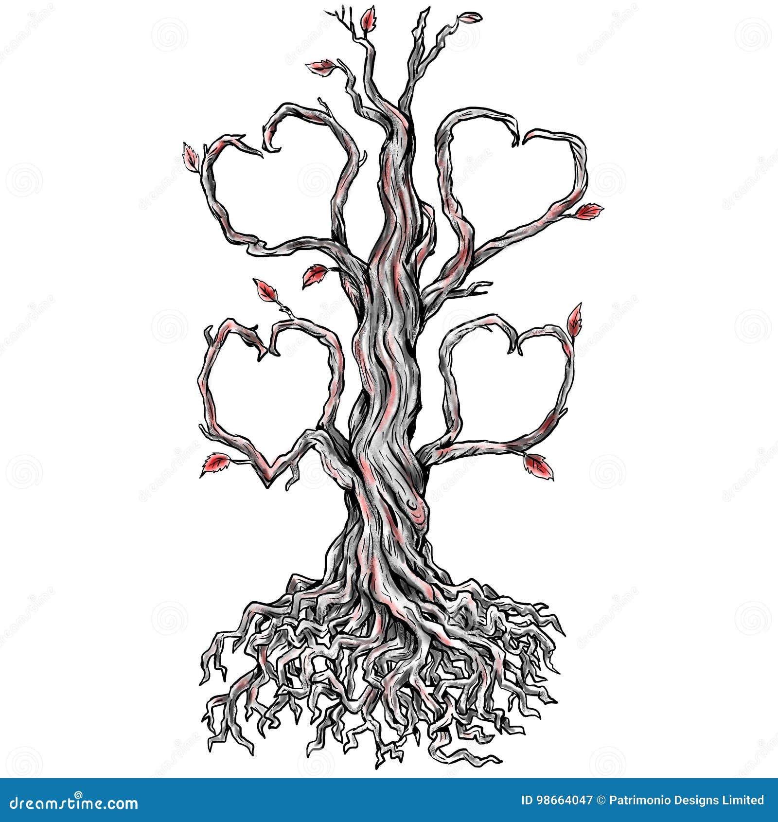 Kręcony Dębowego Drzewa Serca Gałąź Tatuaż Ilustracji