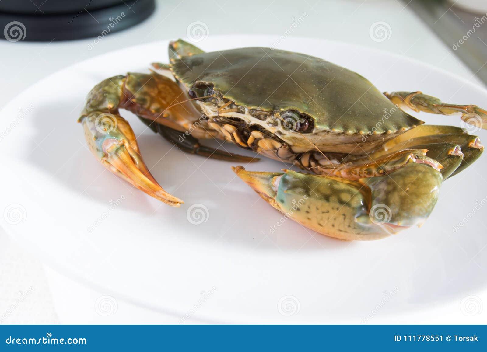 Krab na talerzu
