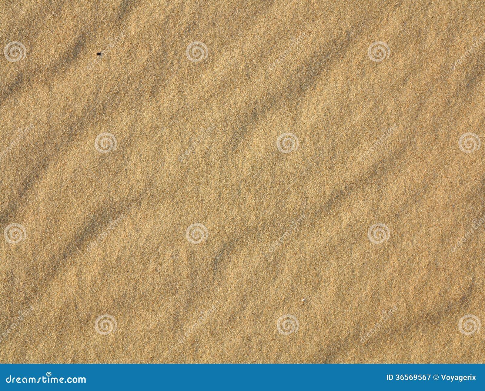Krabb gul sandtexturbakgrund