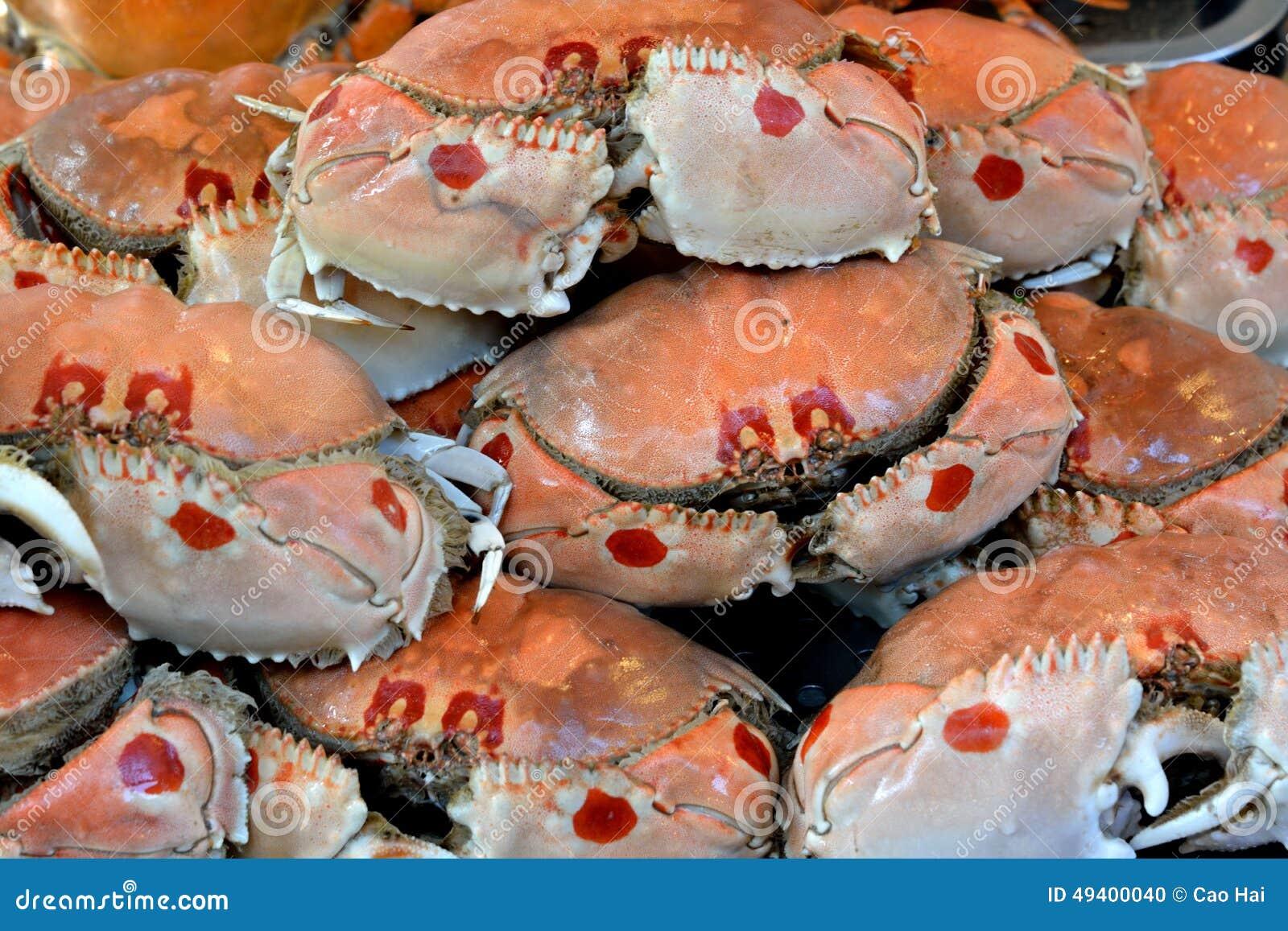Download Krabben in rohem stockfoto. Bild von gekennzeichnet, cuisine - 49400040