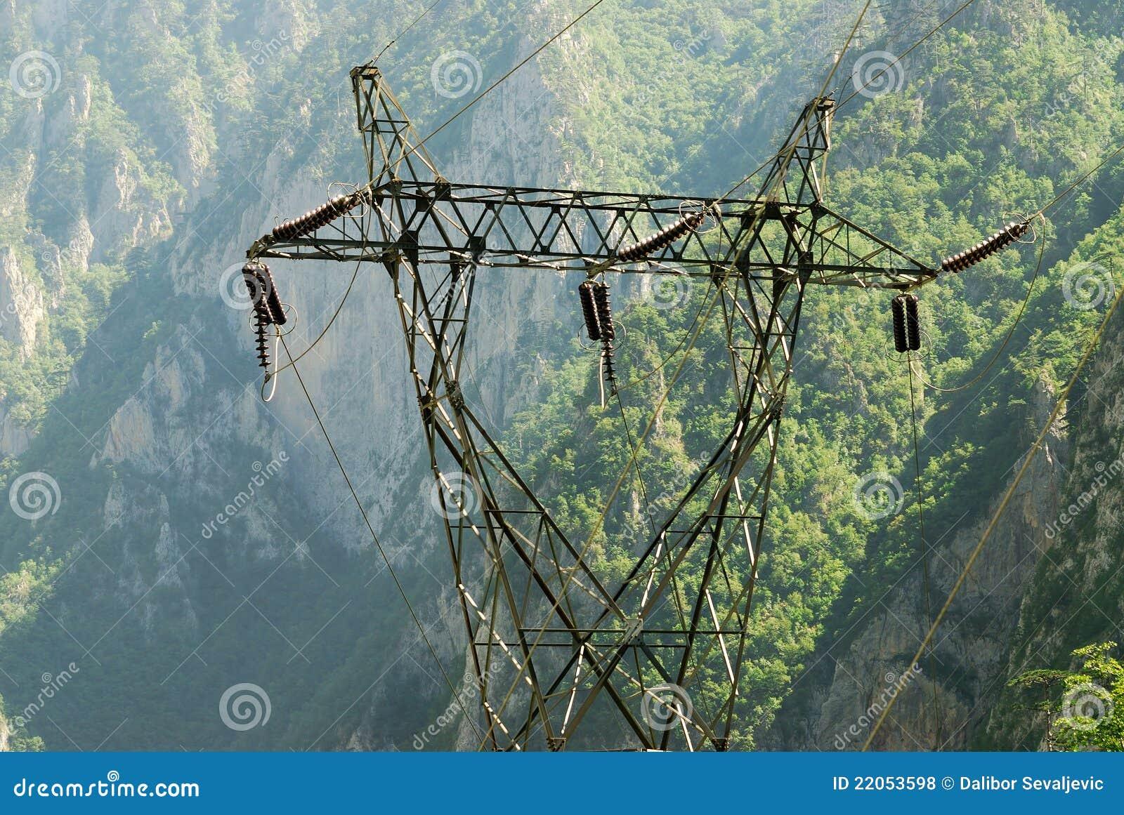 Kraftübertragungzeile im wilden