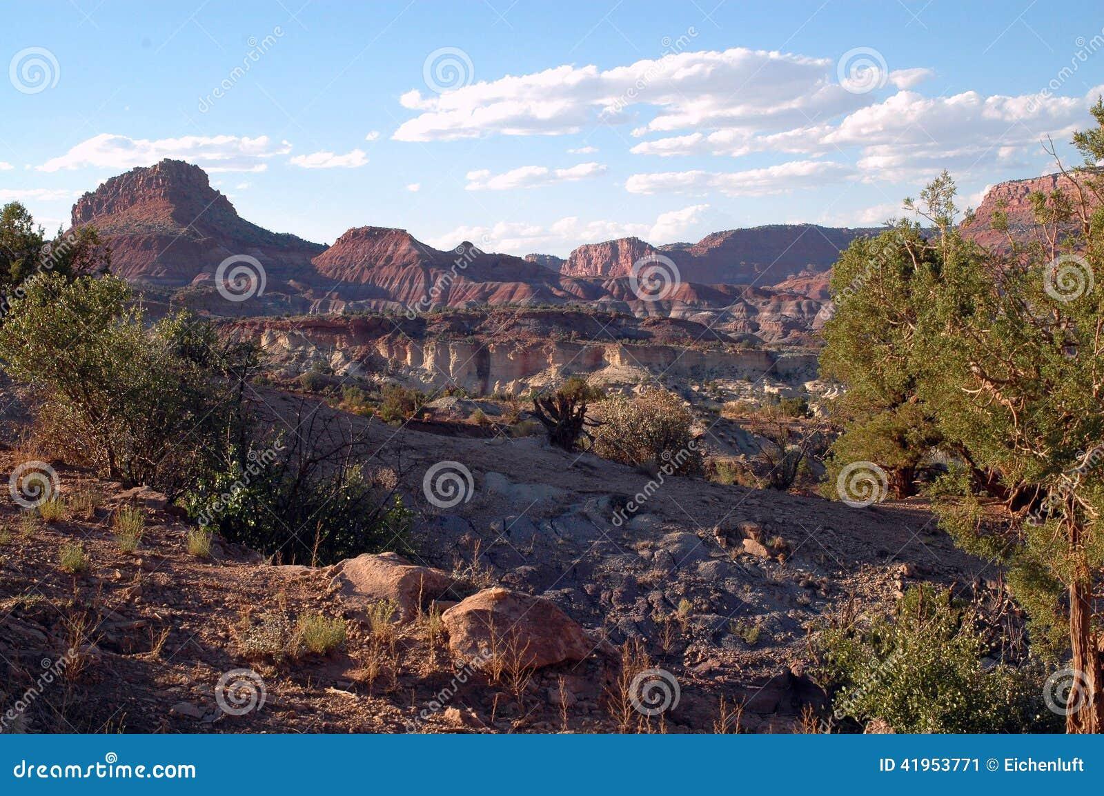 4 krajobraz
