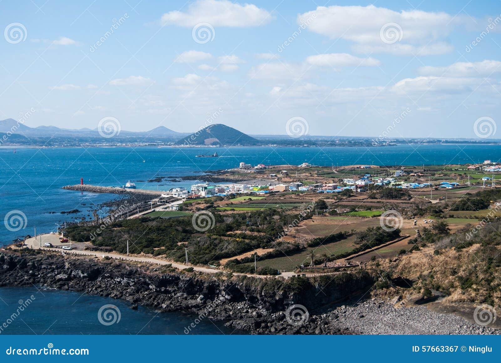 Krajobraz krowy wyspa w Jeju wyspie, Południowy Korea