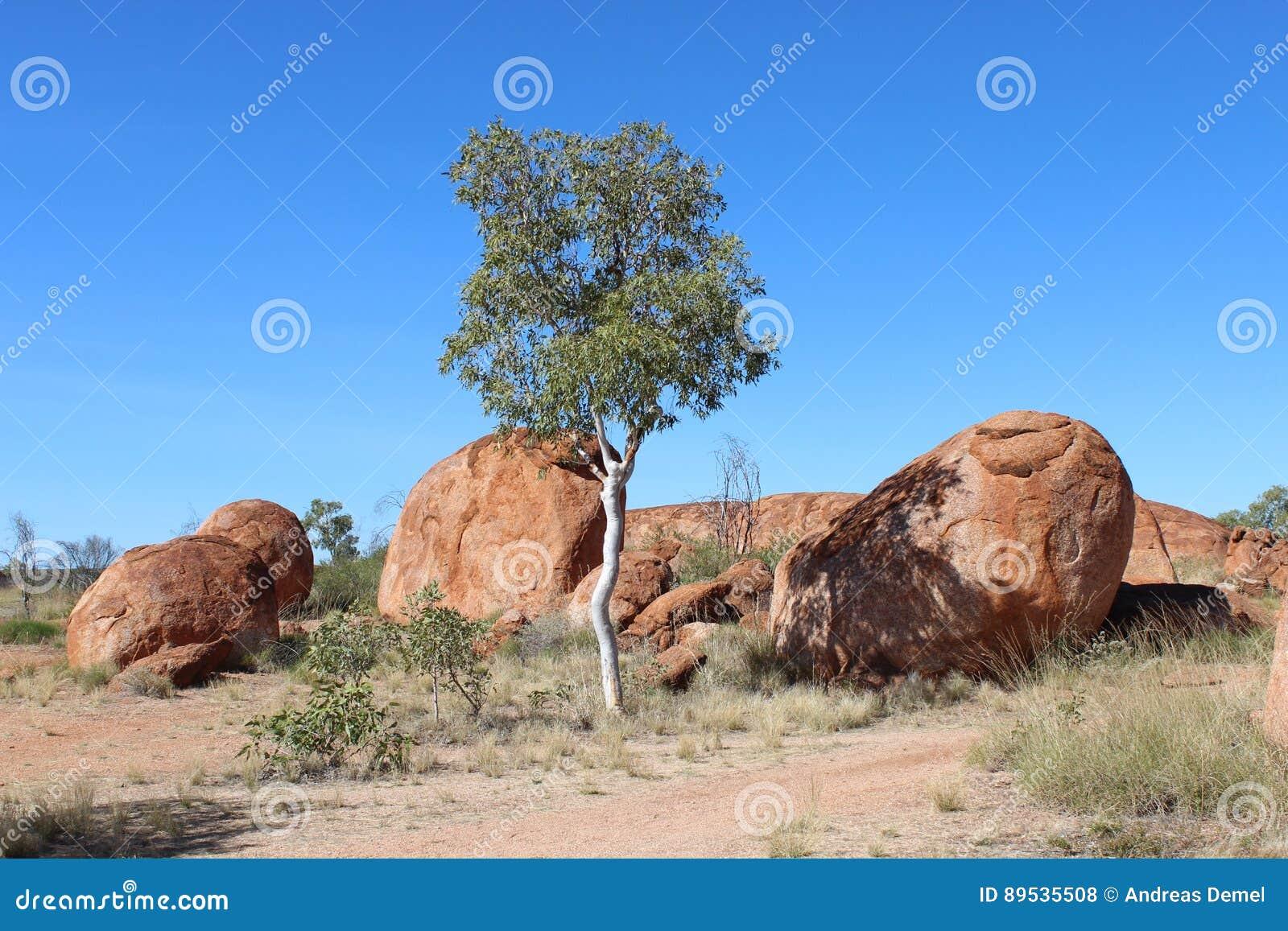 Krajobraz przy diabłów marmurami w Australia