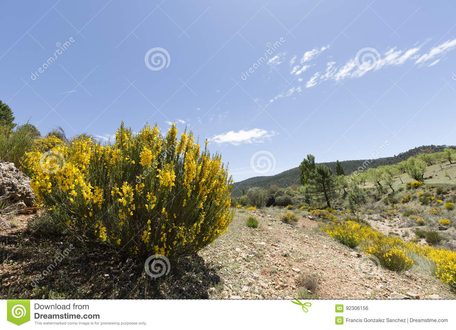 Krajobraz w cañadas De Haches de Arriba