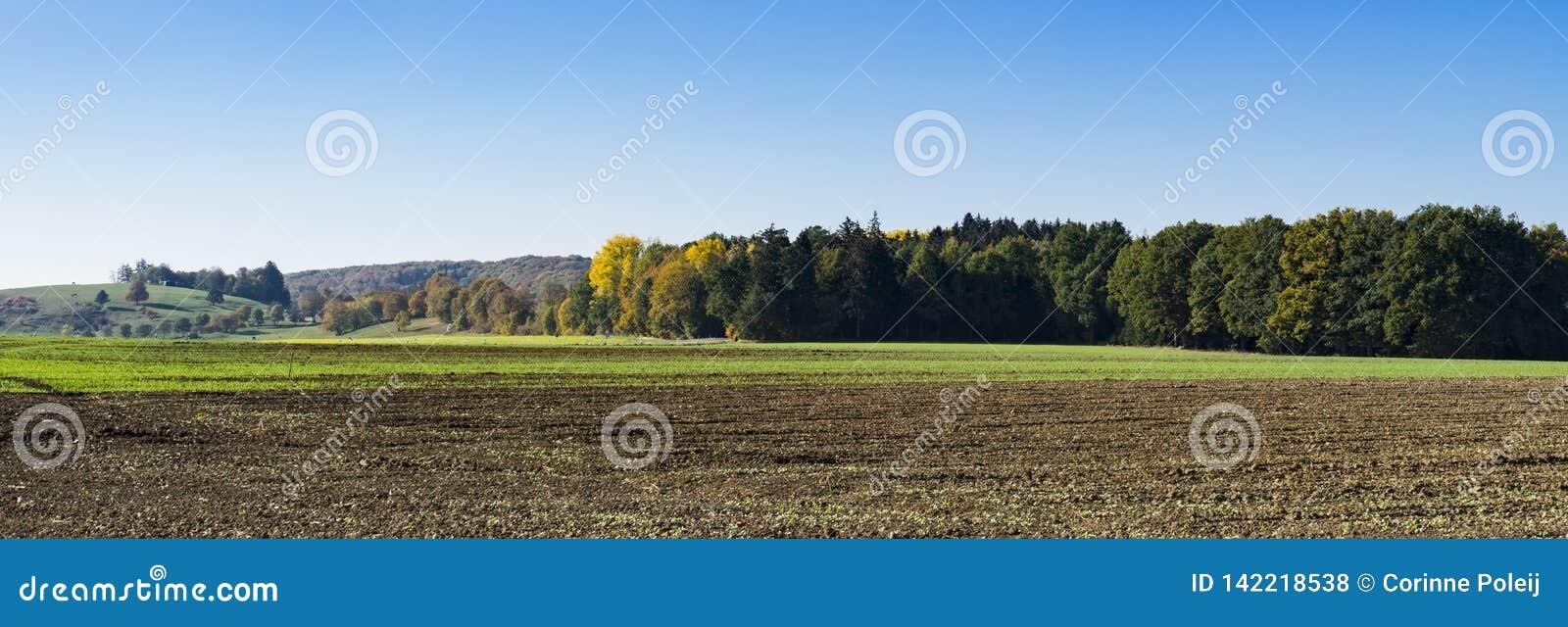 Krajobraz wzdłuż Romantycznej drogi, Buchdorf, Niemcy panorama