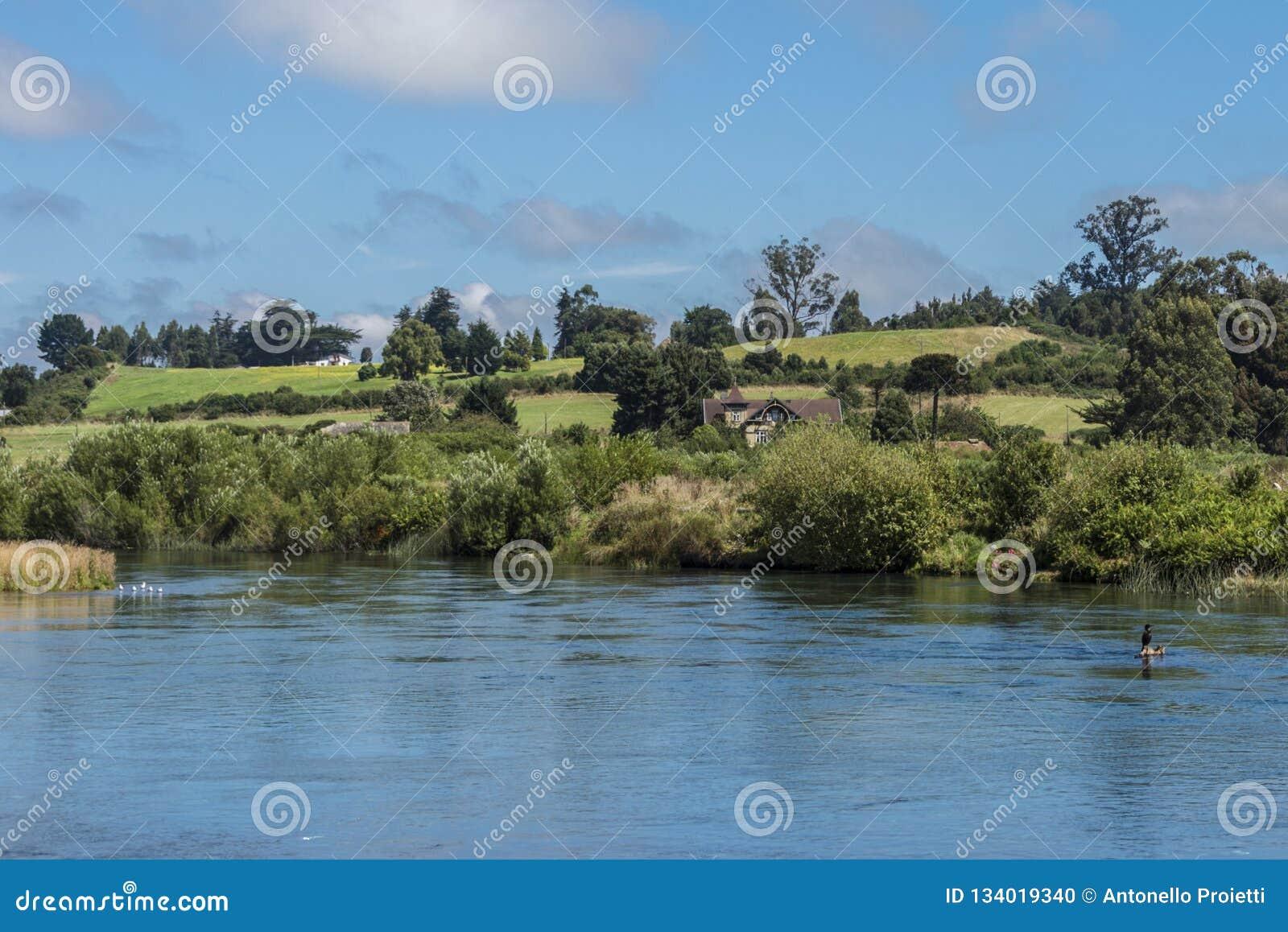 Krajobraz z łąkami i rzeką w południowym Chile
