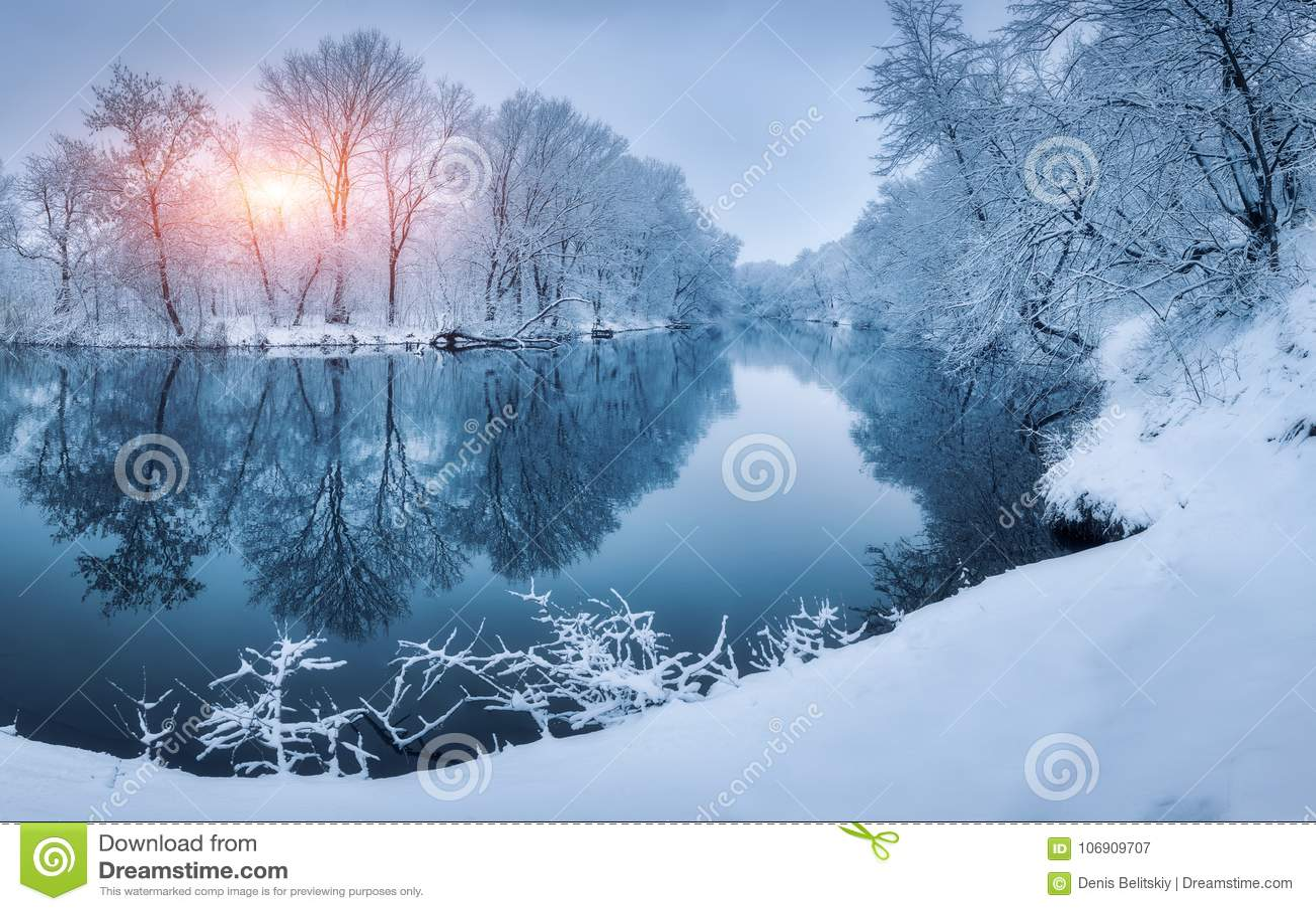 Krajobraz z śnieżnymi drzewami w zima lesie