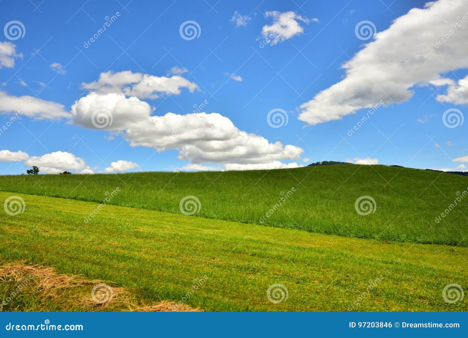 Krajobrazowa fotografia wieś w Austria