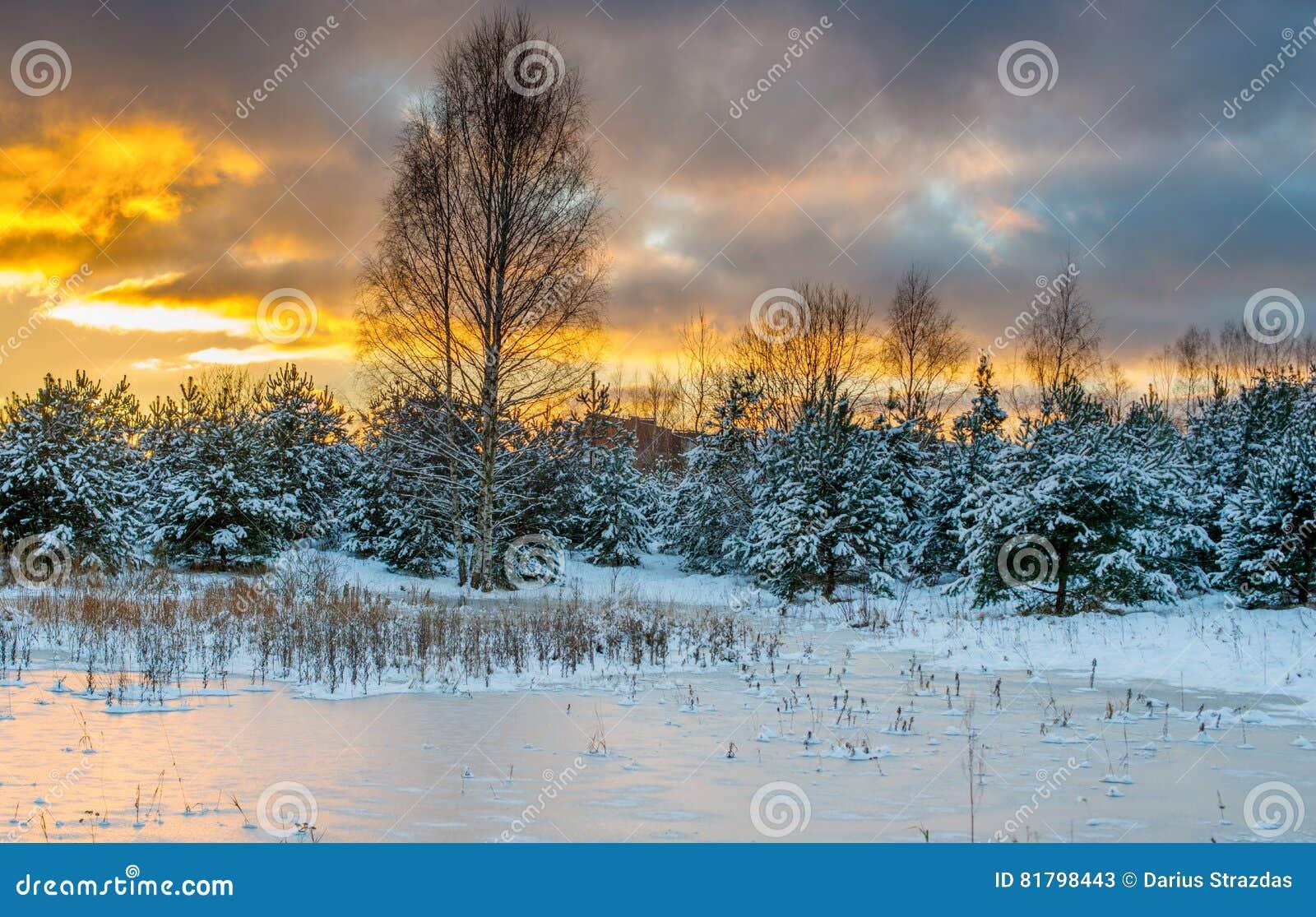 Krajobrazowa sceniczna zimy