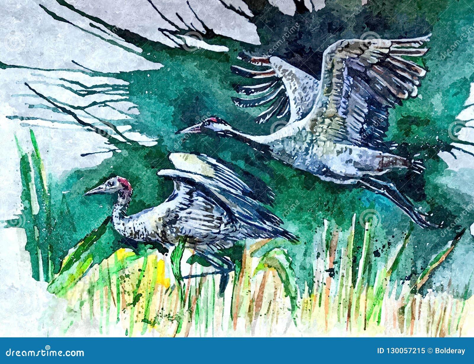 Kranen wildlife Het schilderen van natte waterverf op papier Naïef art Tekeningswaterverf op papier