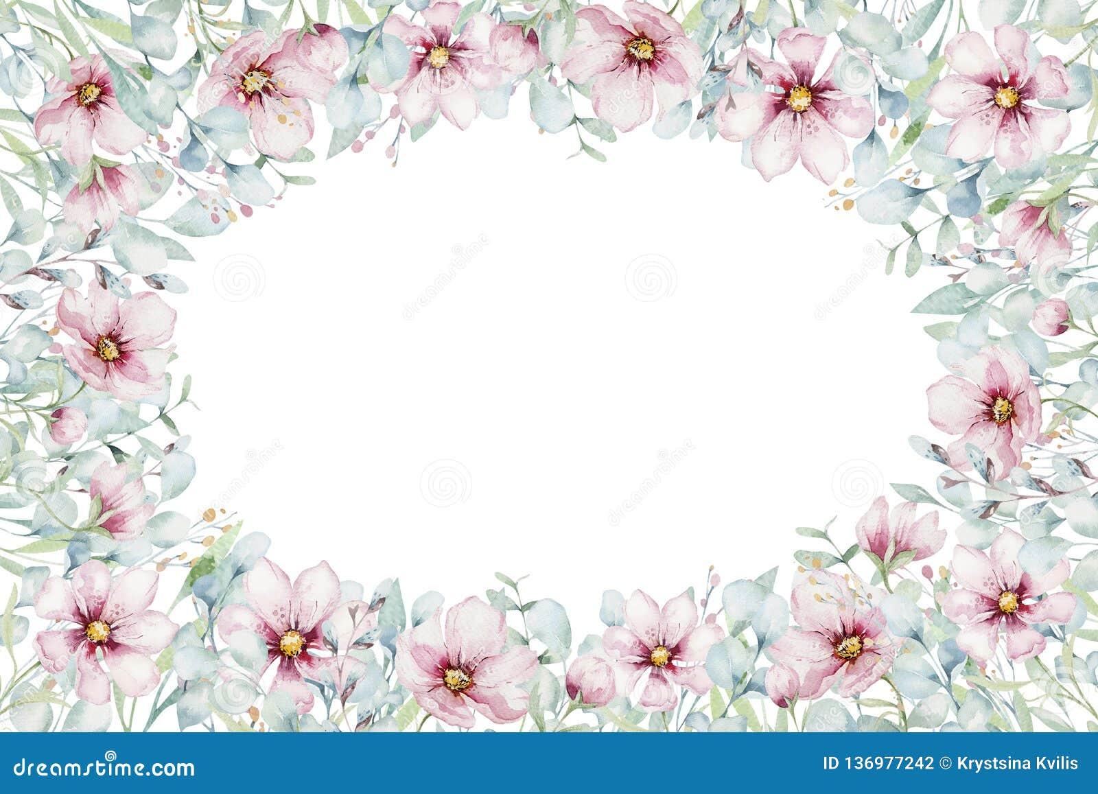 Krans av rosa körsbärsröda blommor för blomning i vattenfärgstil med vit bakgrund Ställ in av sommar som blommar japanska sakura