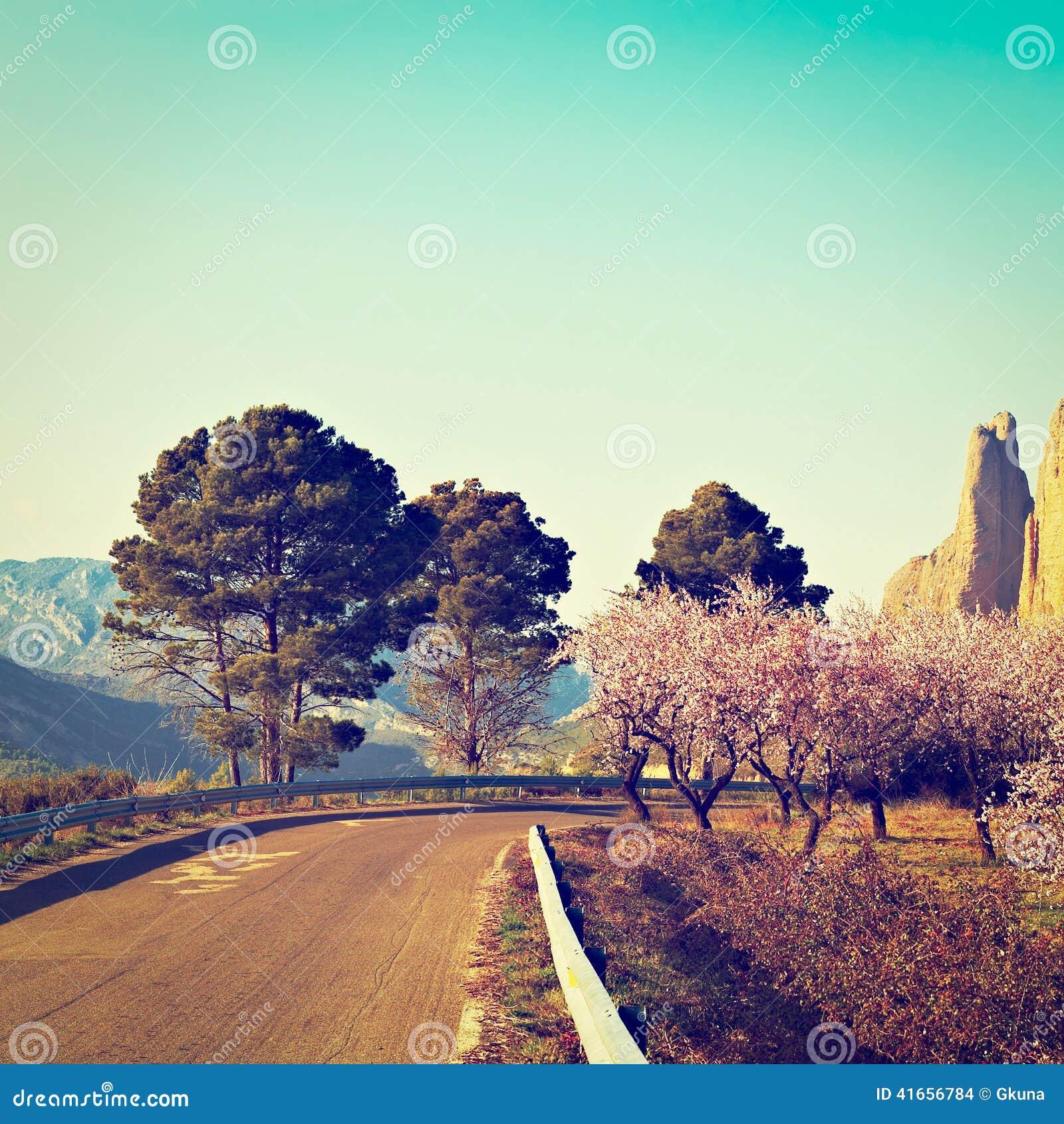 Krasnodar дорога Россия зоны горы