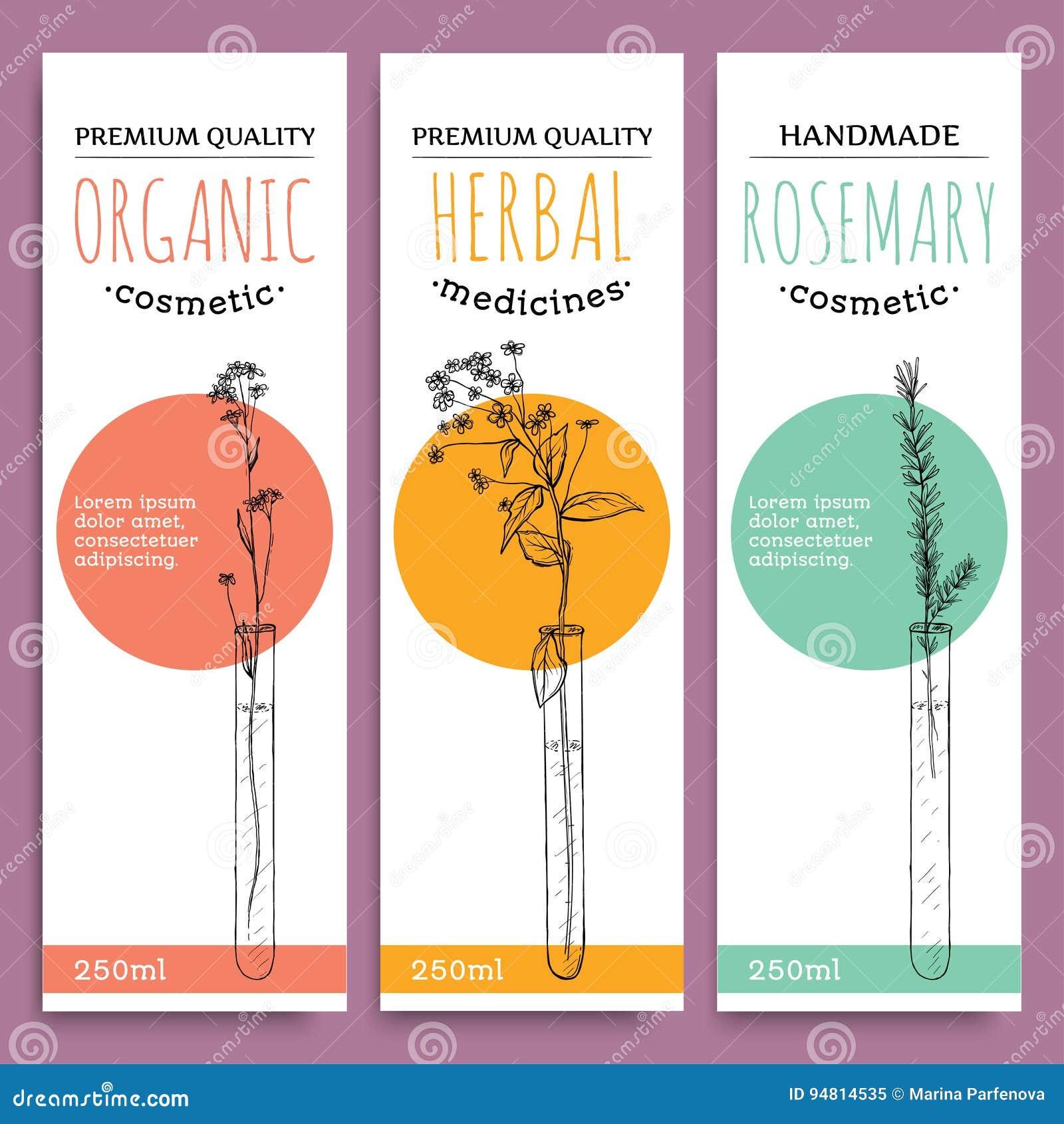 Kreśli ziołowych pionowo sztandary z organicznie ziele rozmarynową kosztownością dla zdrowie ludzkie wektoru ilustraci