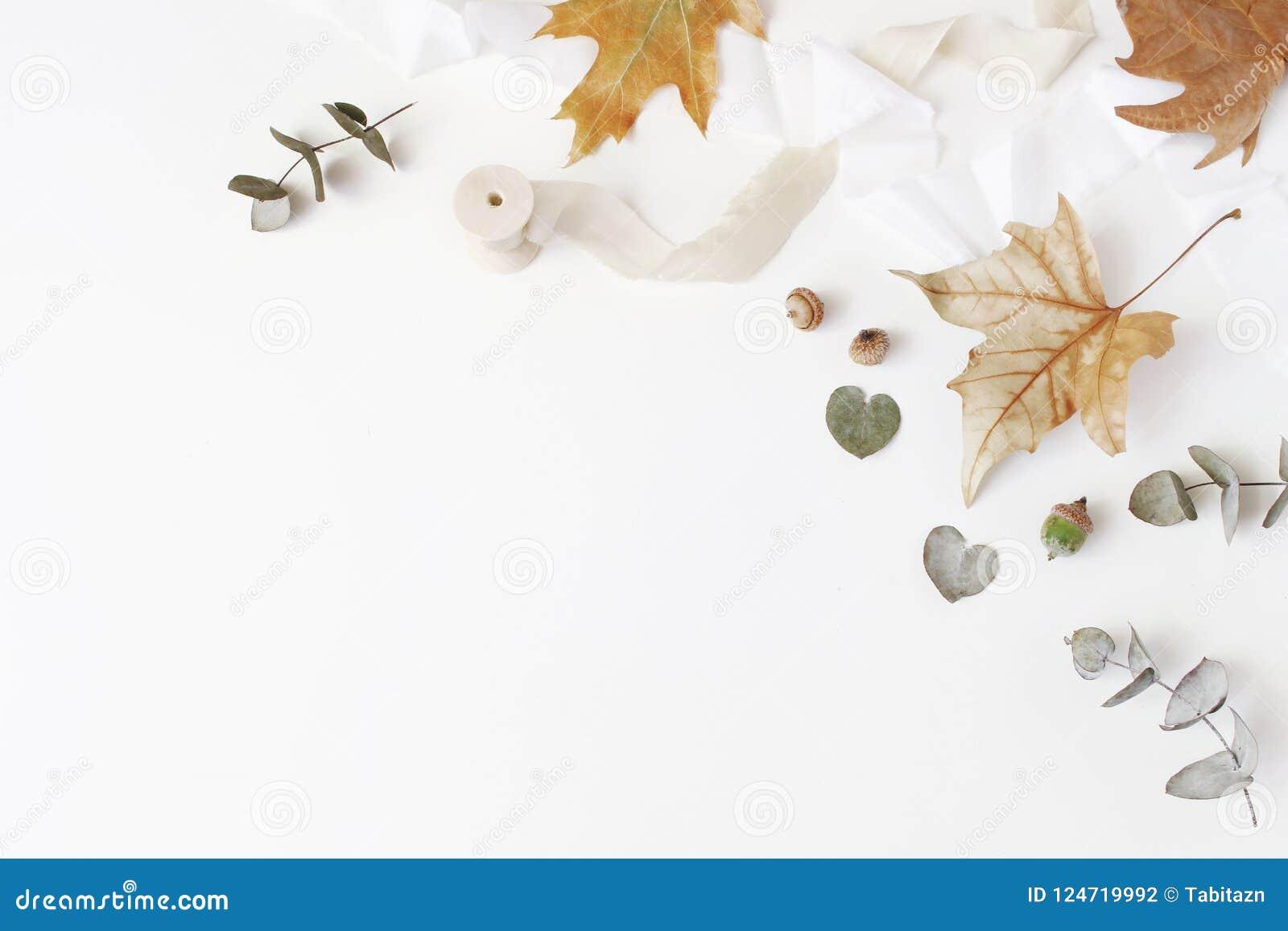 Kreative angeredete Zusammensetzung des Falles Herbstblumengesteck mit trockenem Eukalyptus, Ahornblättern und Seidenband auf Wei