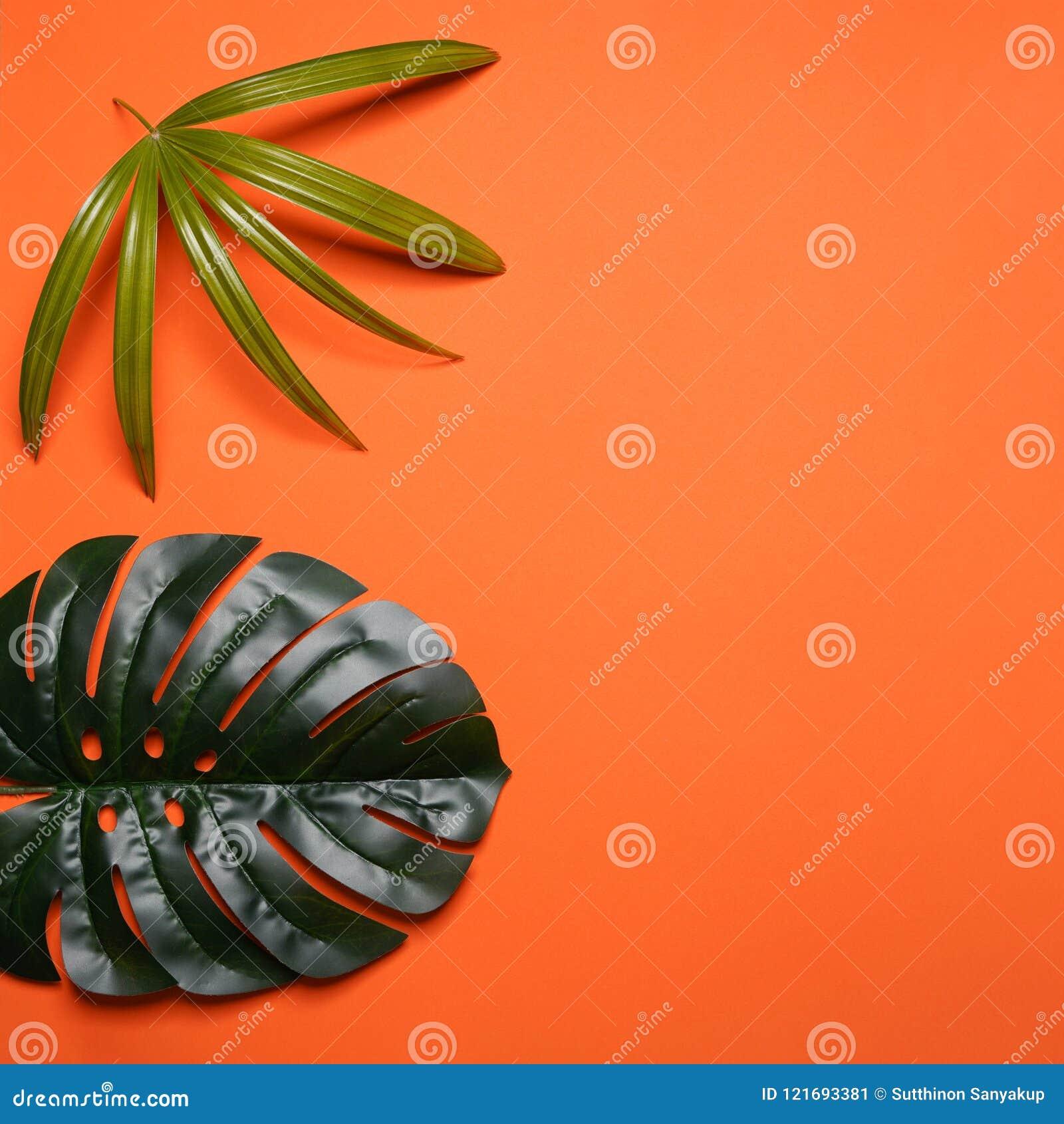 Kreativer Plan gemacht von den bunten tropischen Blättern auf orange Hintergrund Exotisches Konzept des minimalen Sommers mit Kop