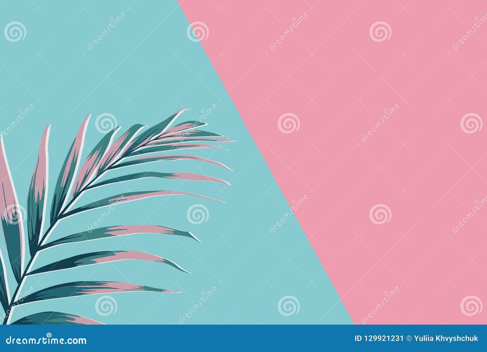 Kreatywnie minimalny lato pomysł Zielone różowe palmowego liścia gałąź Tropikalny egzotyczny tło z pustą przestrzenią dla teksta