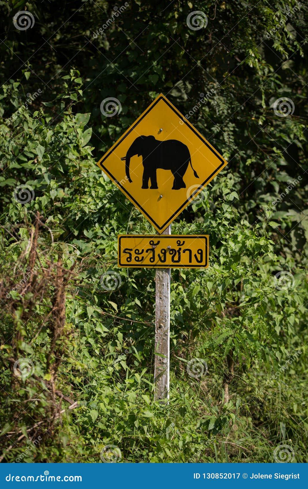 Kreuzungszeichen des Elefanten herein thailändisch