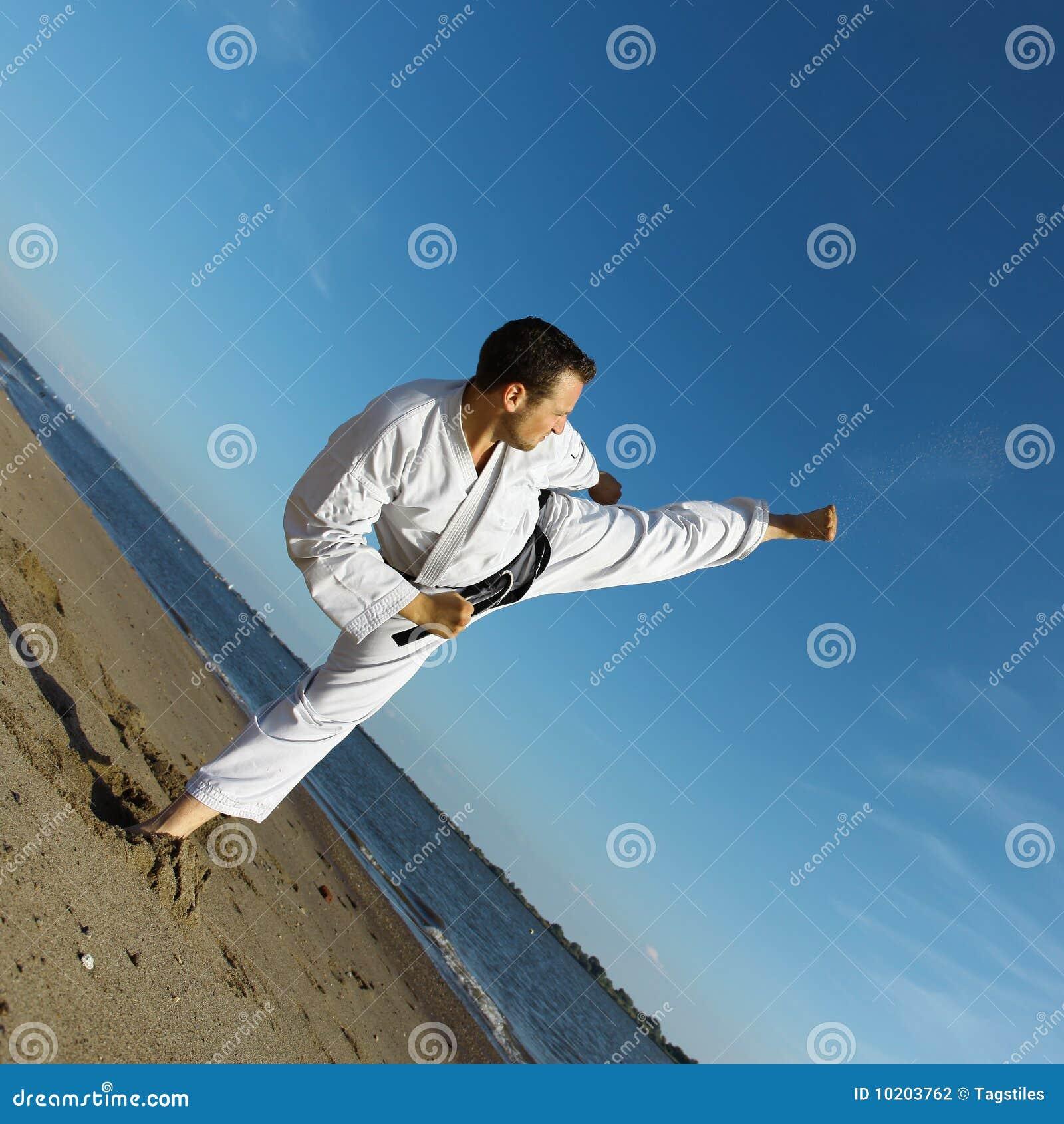 Download Kriegs-Künste stockfoto. Bild von karate, schwerpunkt - 10203762