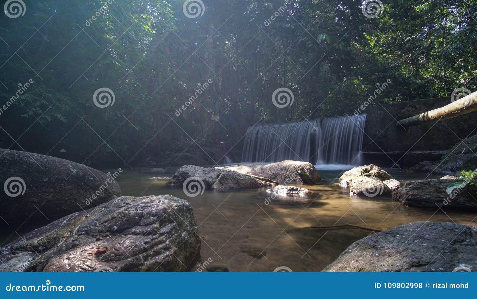Kristallklart vatten med vattenfallet i skogen
