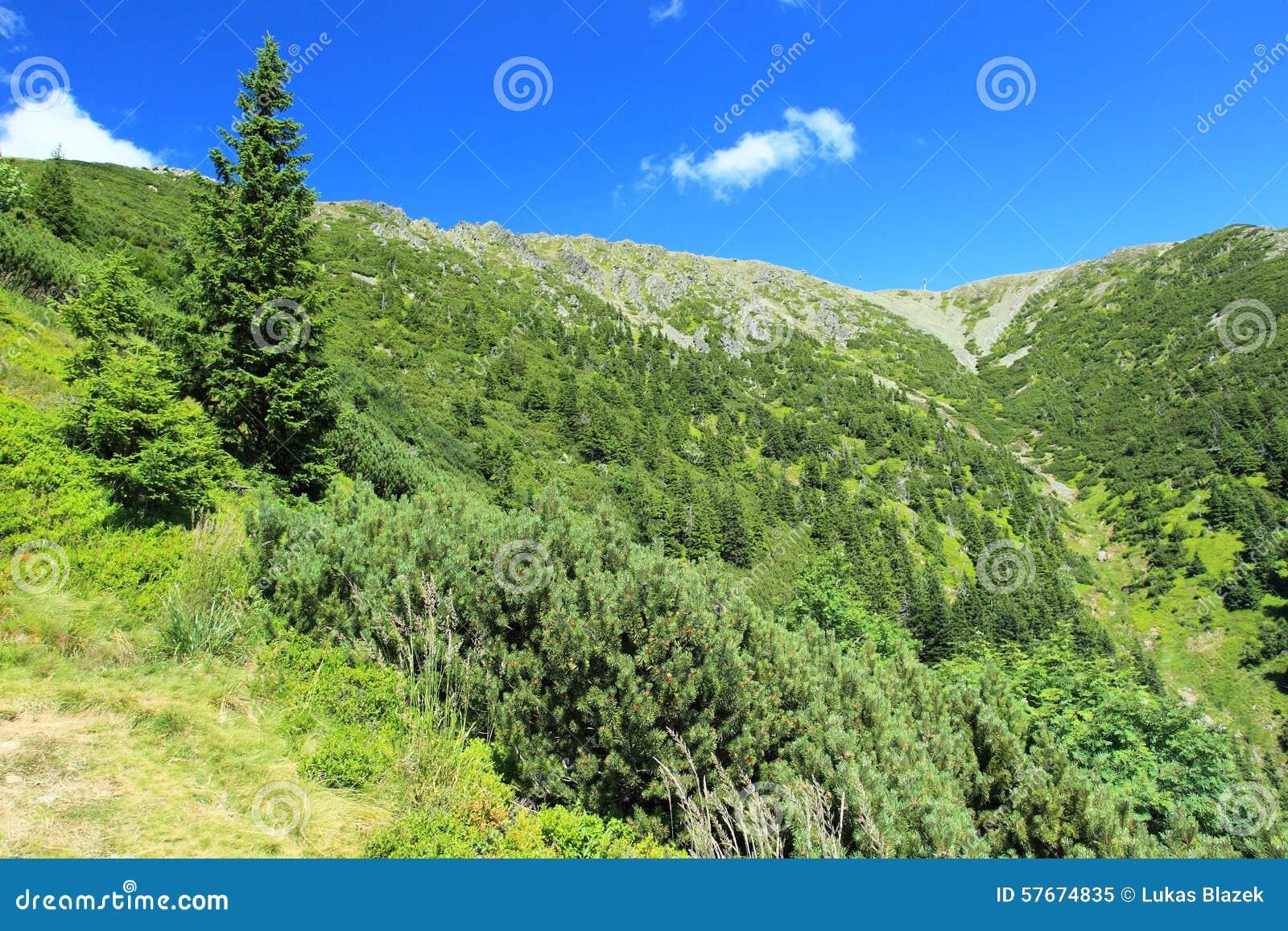 Krkonose góry