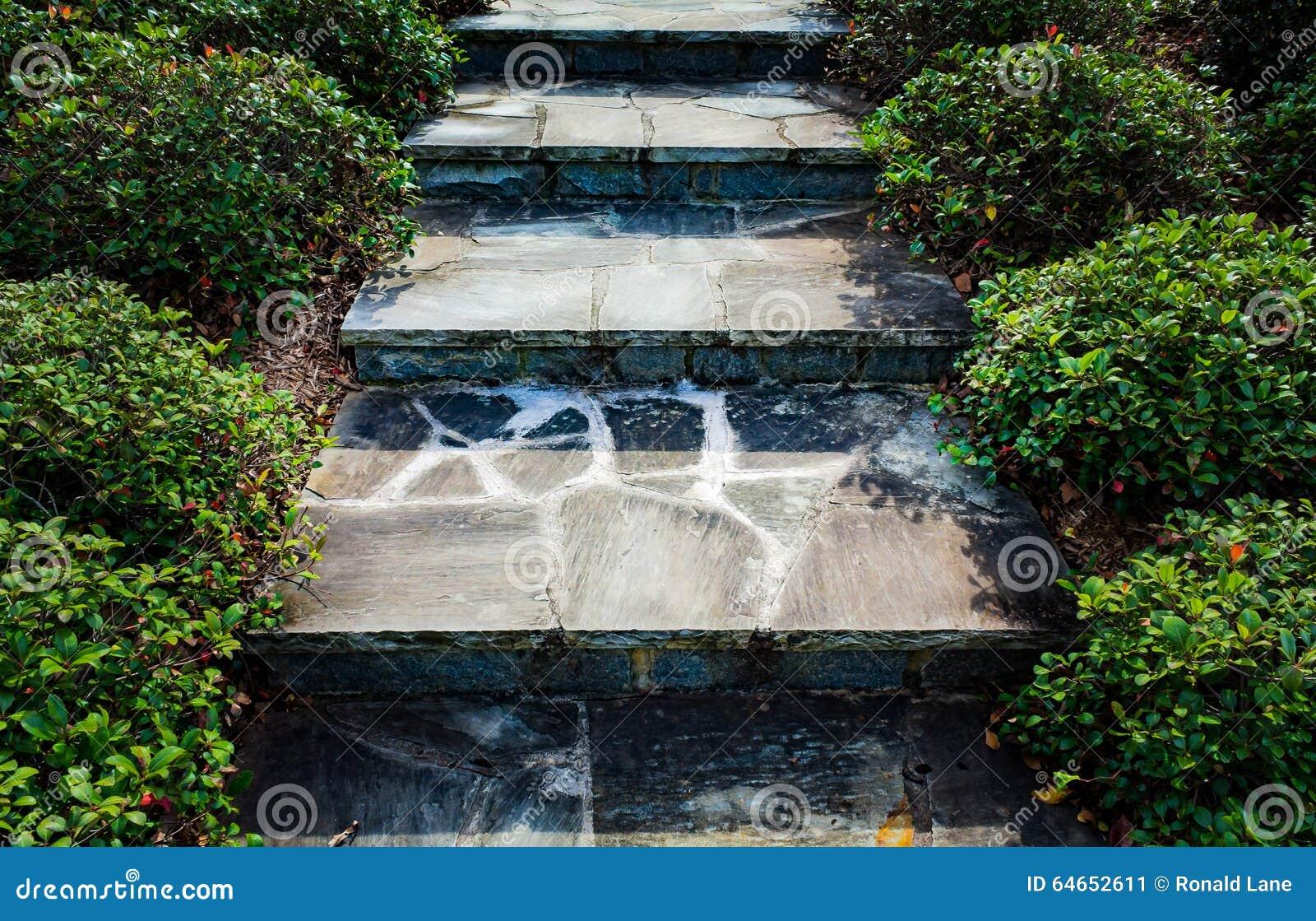 Kroki skała