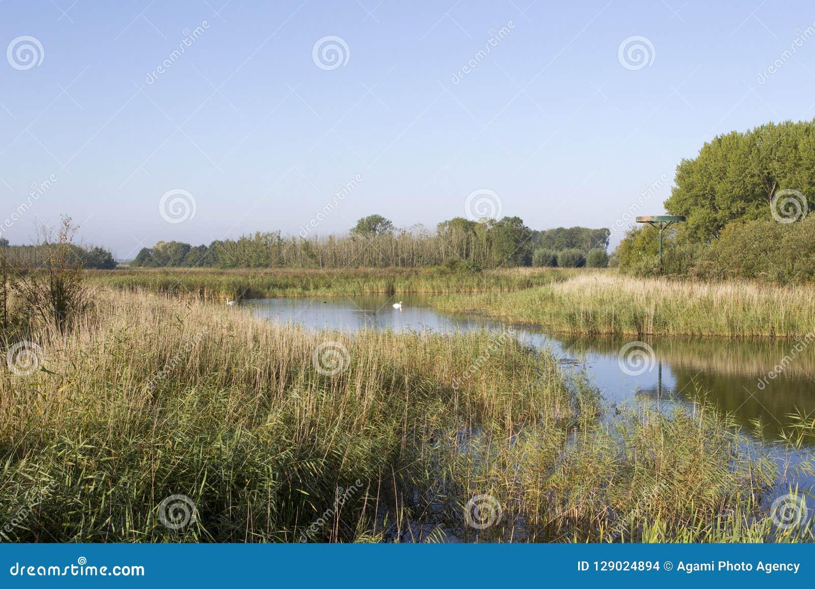 Kromslootpark Almere