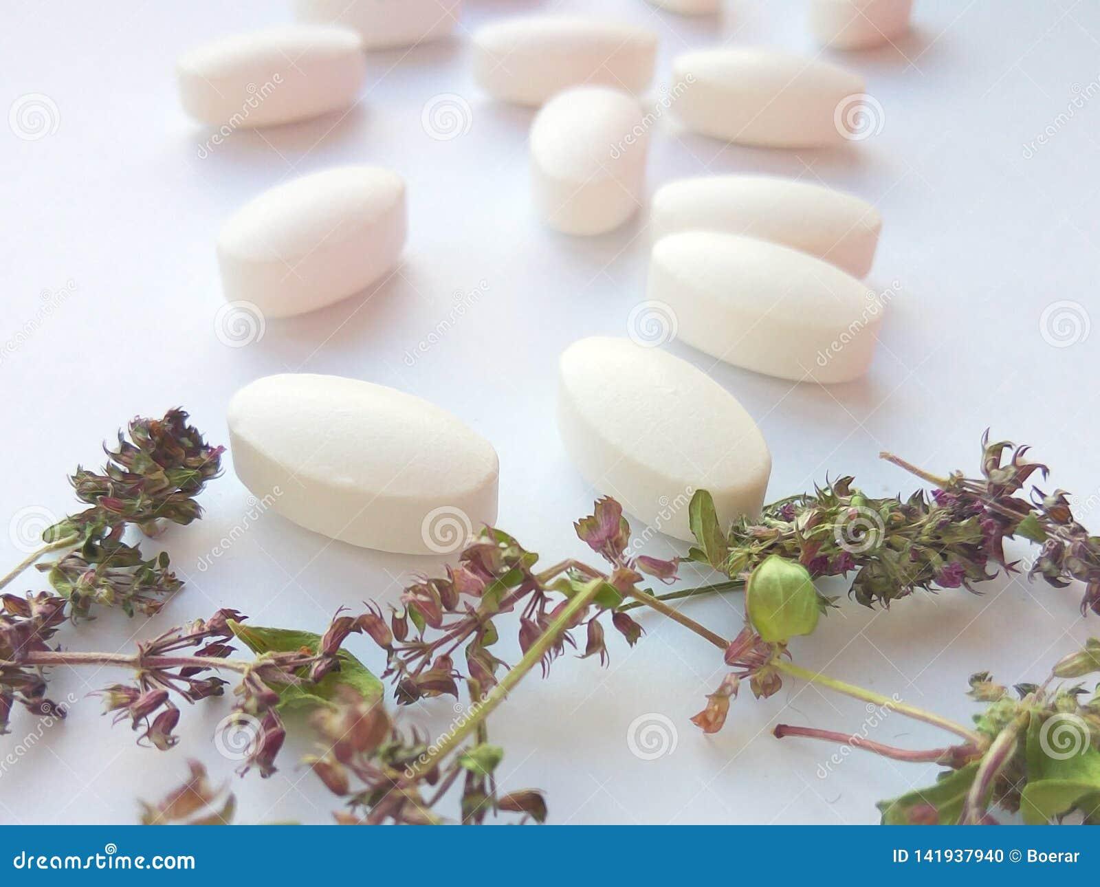 Kruidengeneeskundepillen met droge natuurlijke kruiden op witte achtergrond Concept kruidengeneeskunde en dieetsupplementen