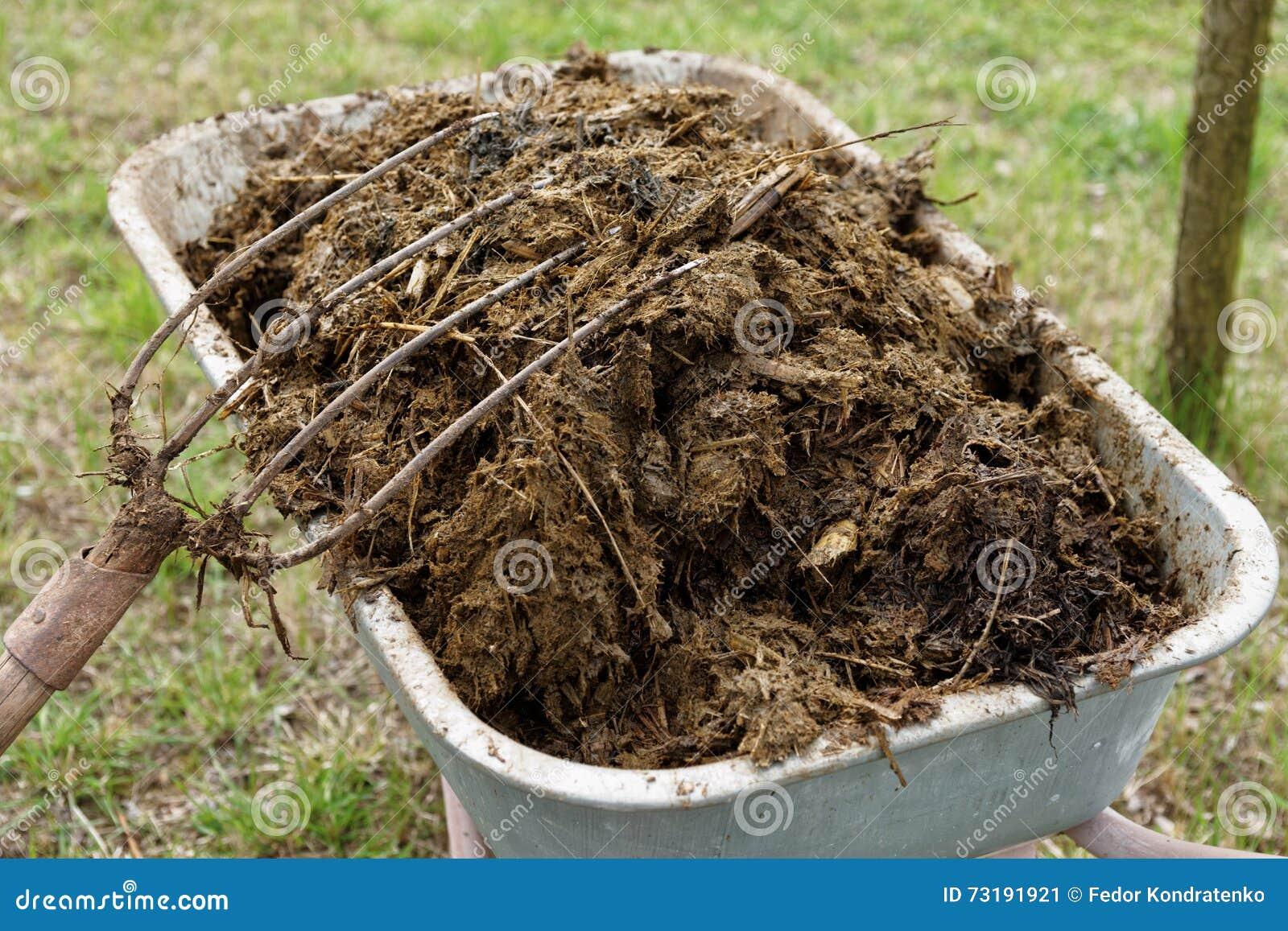 Mest Voor Tuin : Kruiwagenhoogtepunt van mest stock afbeelding afbeelding bestaande