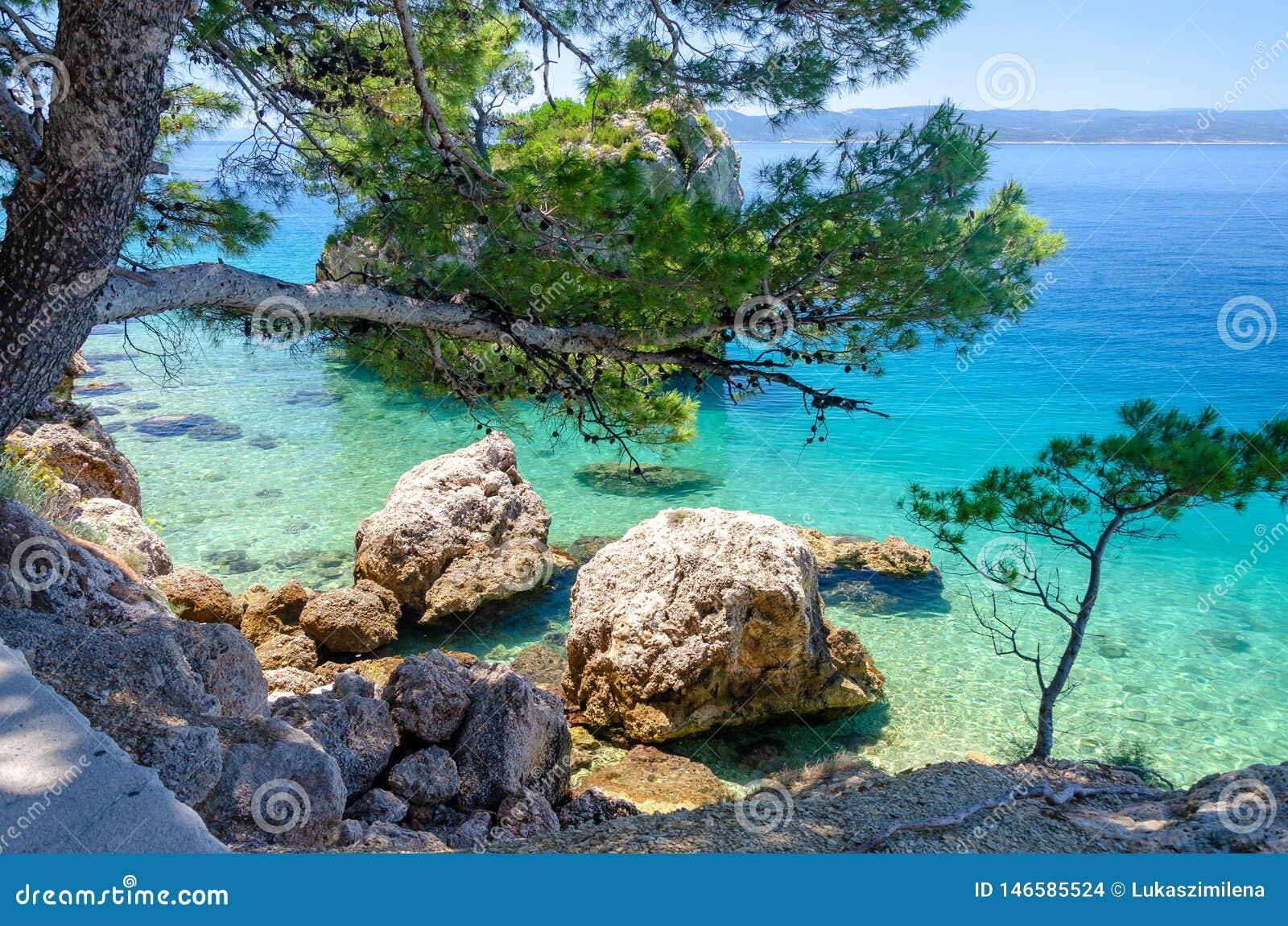 Kryszta? - jasna woda adriatic morze w Brela, Makarska Riviera, Dalmatia, Croatia