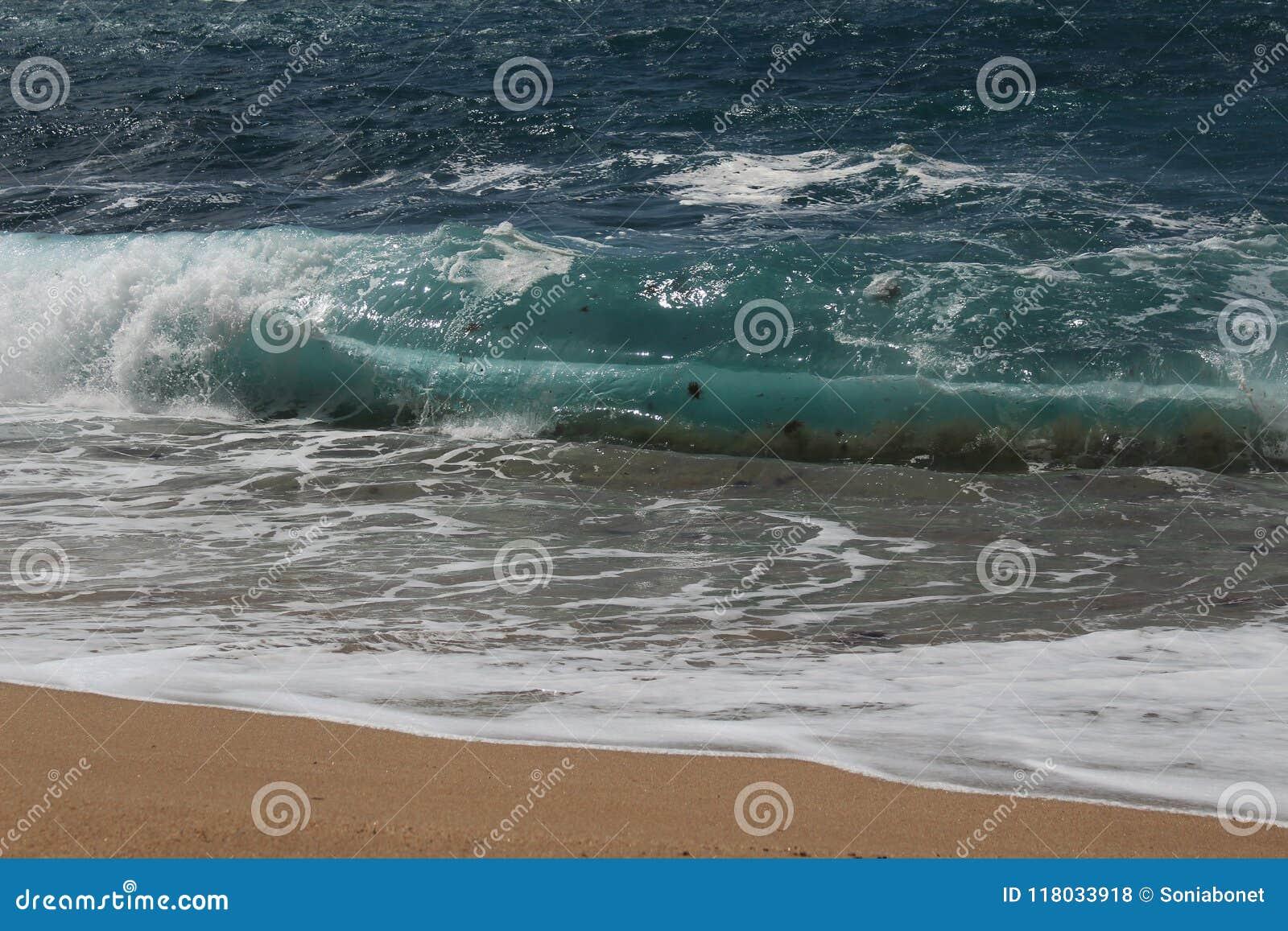 - kryształ jasny i dziki nawadnia w Praia da Foz, Sesimbra, Portugalia