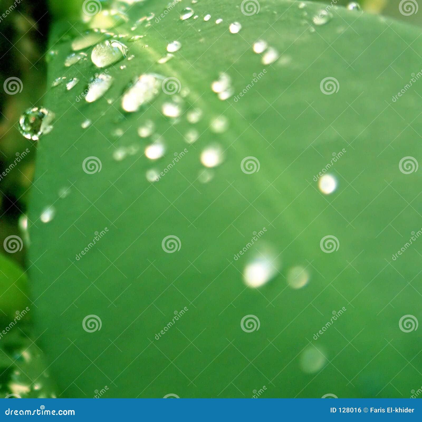 Kryształ wody