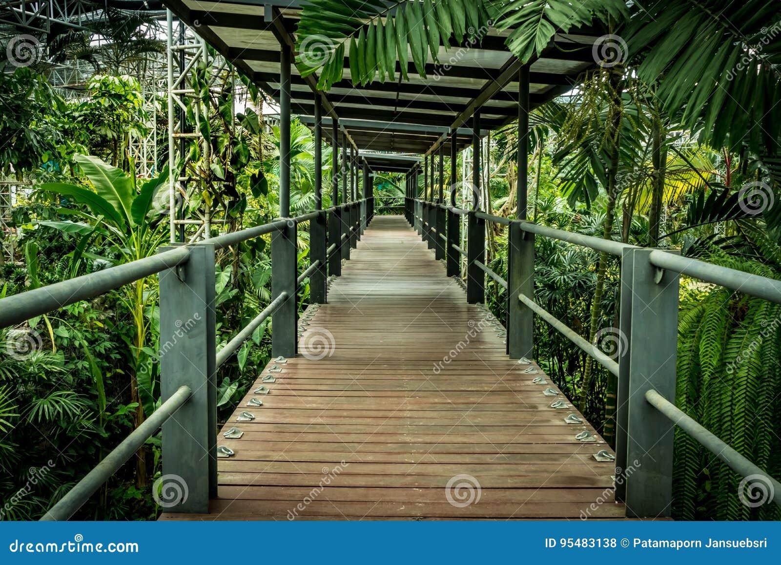 Krzak footbridge refleksje river park