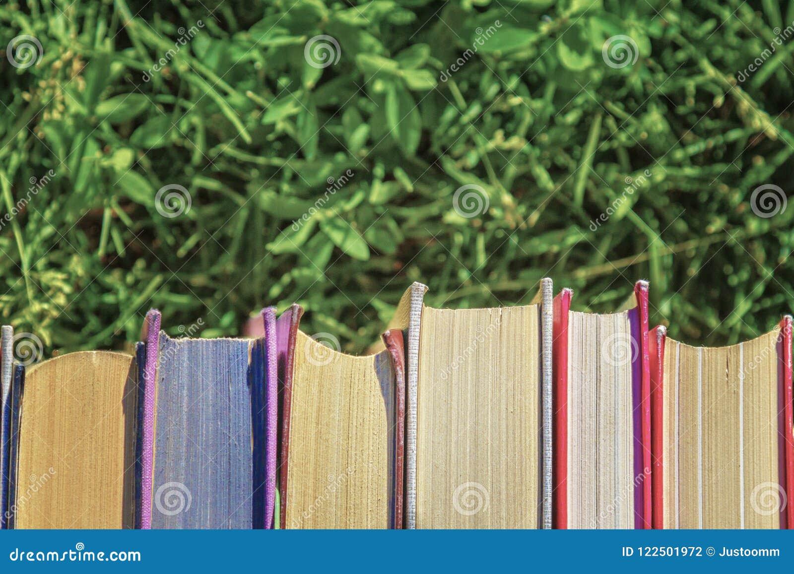 Książki na tle zielona trawa z powrotem szkoła