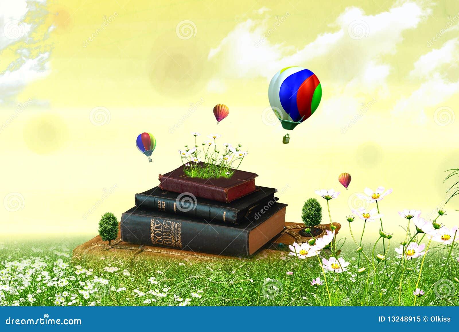 Książki pole