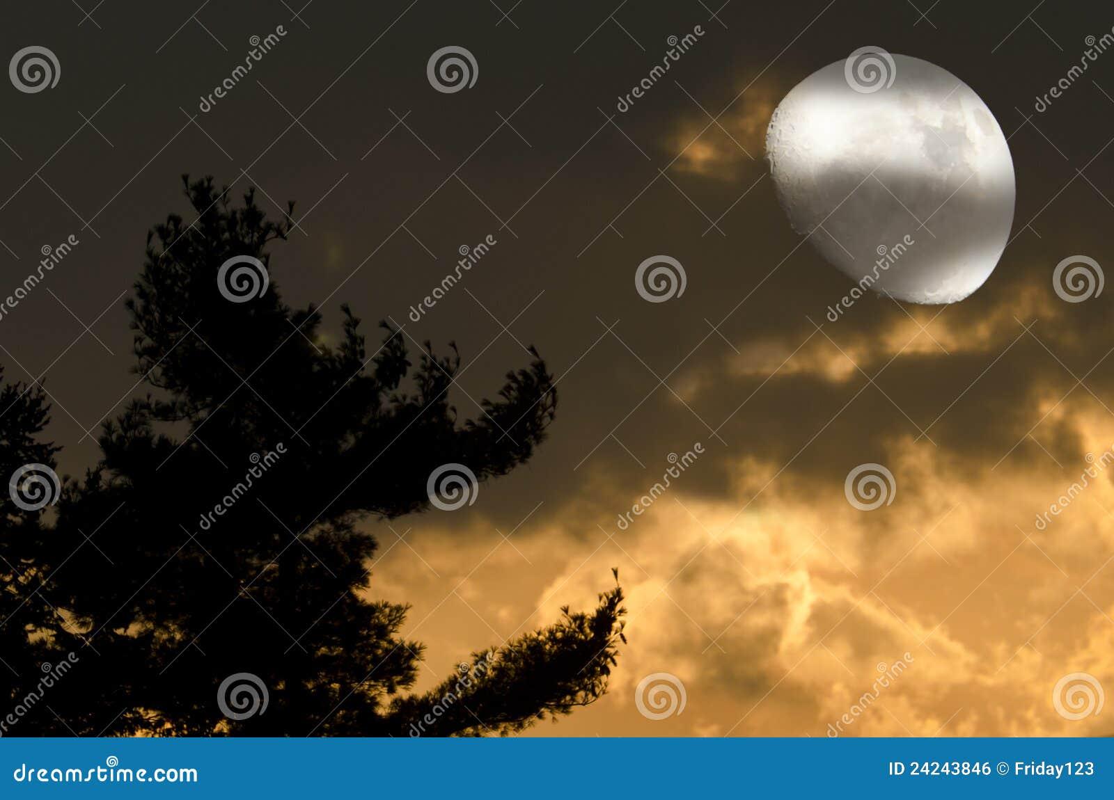 Księżyc mistyczki noc