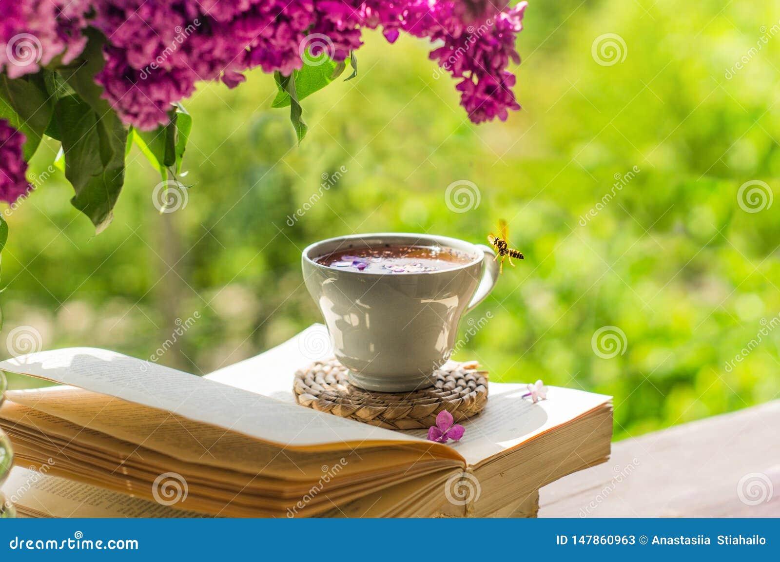 Ksi??ka, szk?a, fili?anka herbata i bez na drewnianym okno, Pszczo?a lata pi?knie nad lilymi p?atkami