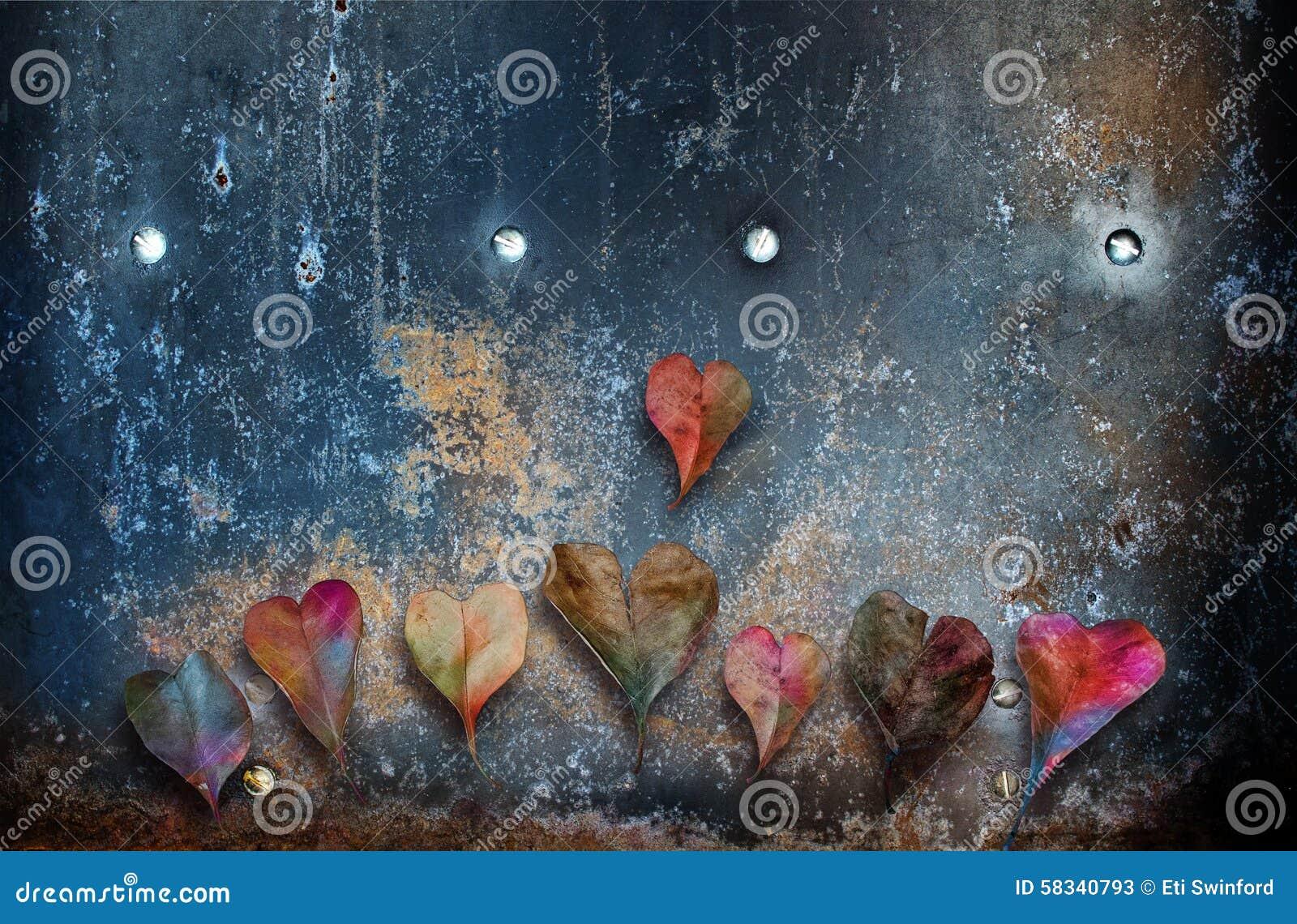 Kształtujący serce liść