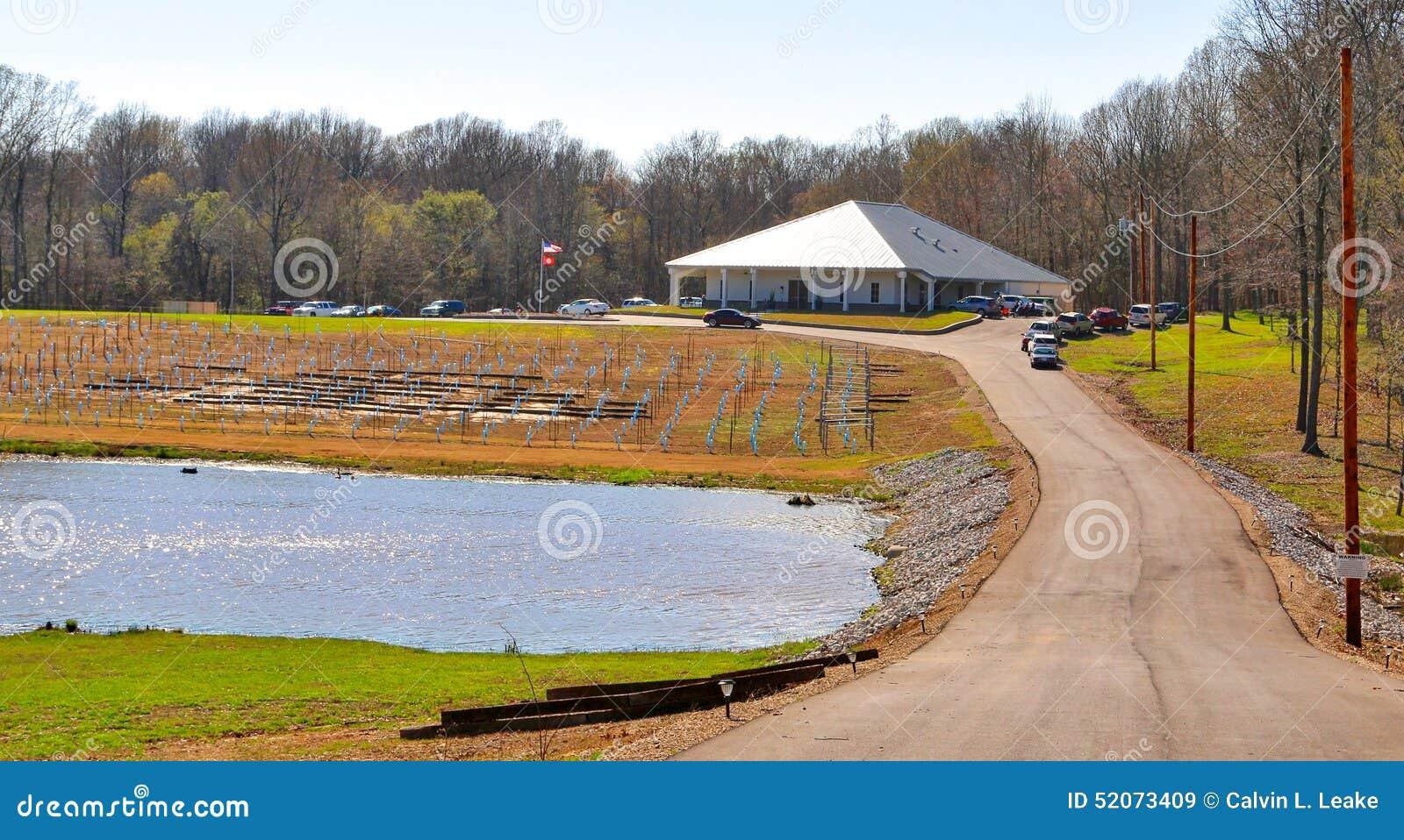 Kształtujący teren widok delt błękitów wytwórnia win