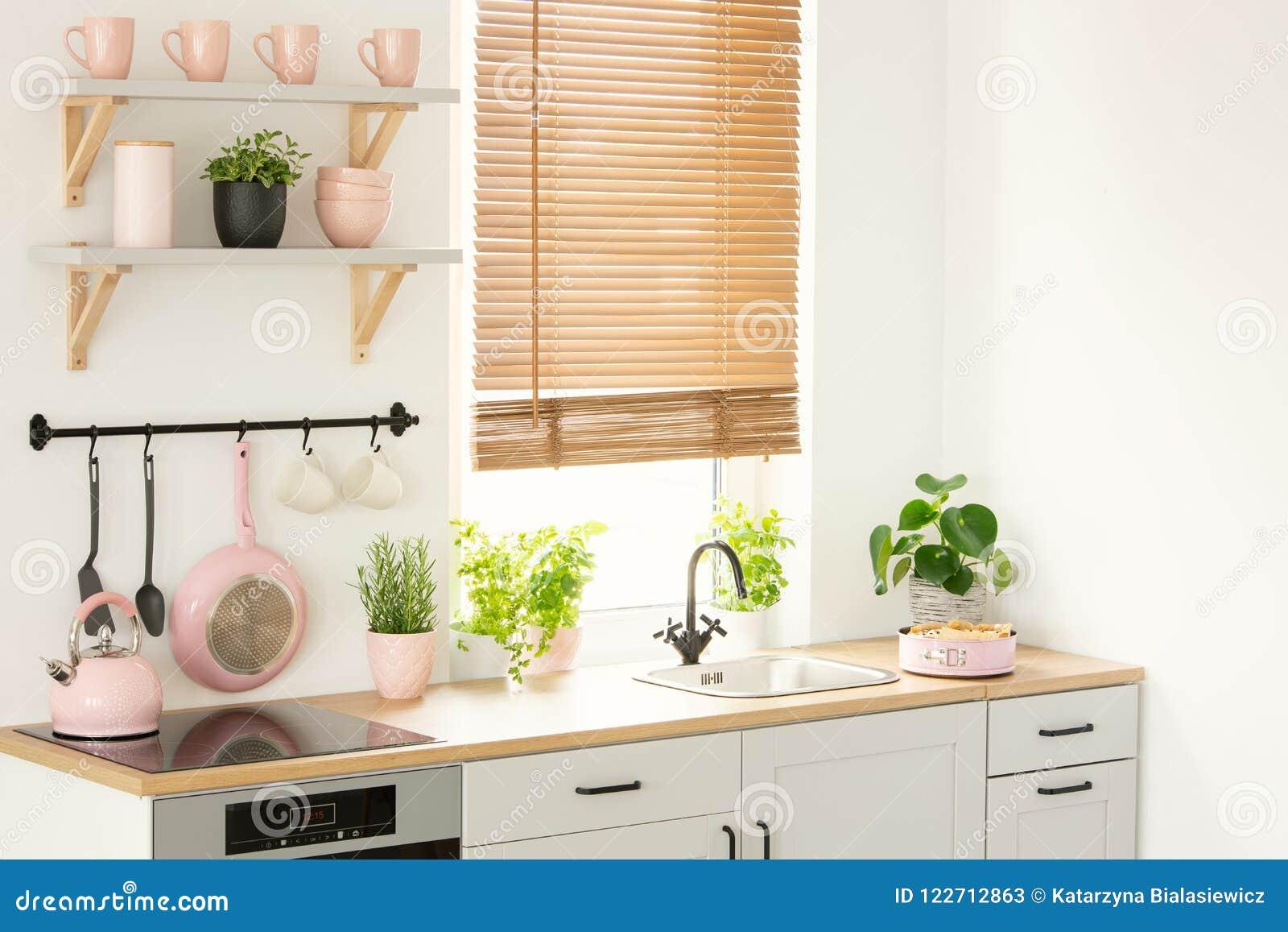 Kuchni Akcesoria Narzędzia Rośliny Nadokienni Ostrza I