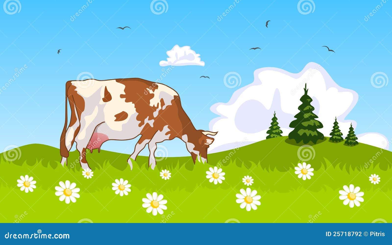 Kuh in der Wiese am Rand der Waldung