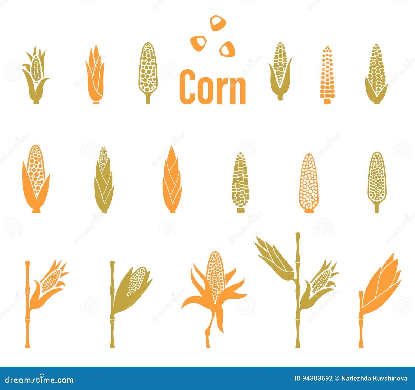 Kukurydzane ikony Rolnictwo loga szablon
